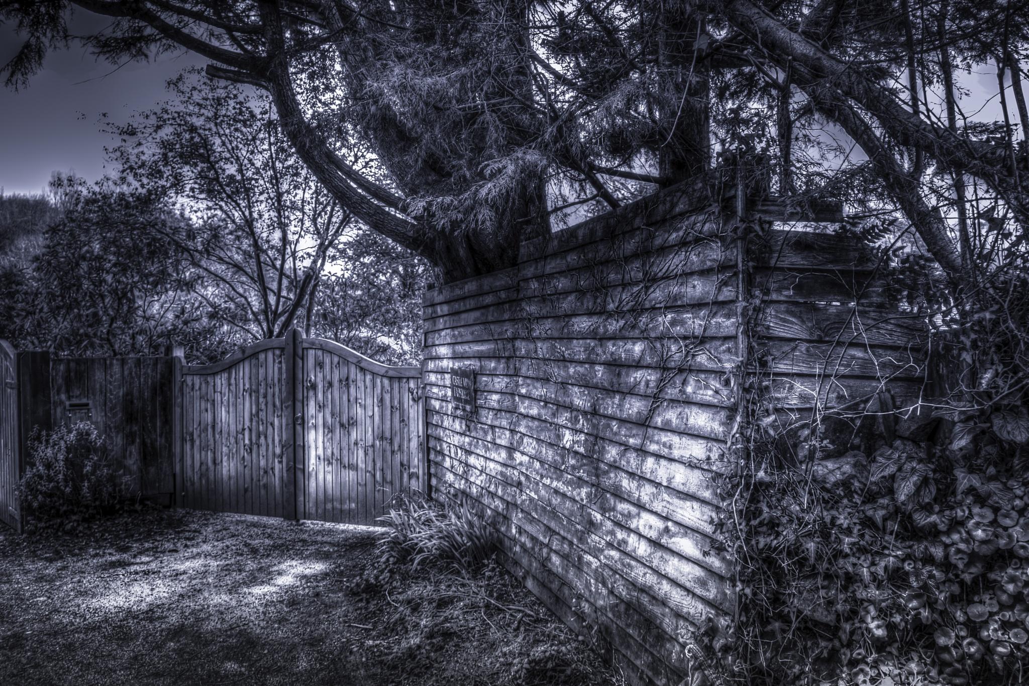 secret gate by phillip ticehurst