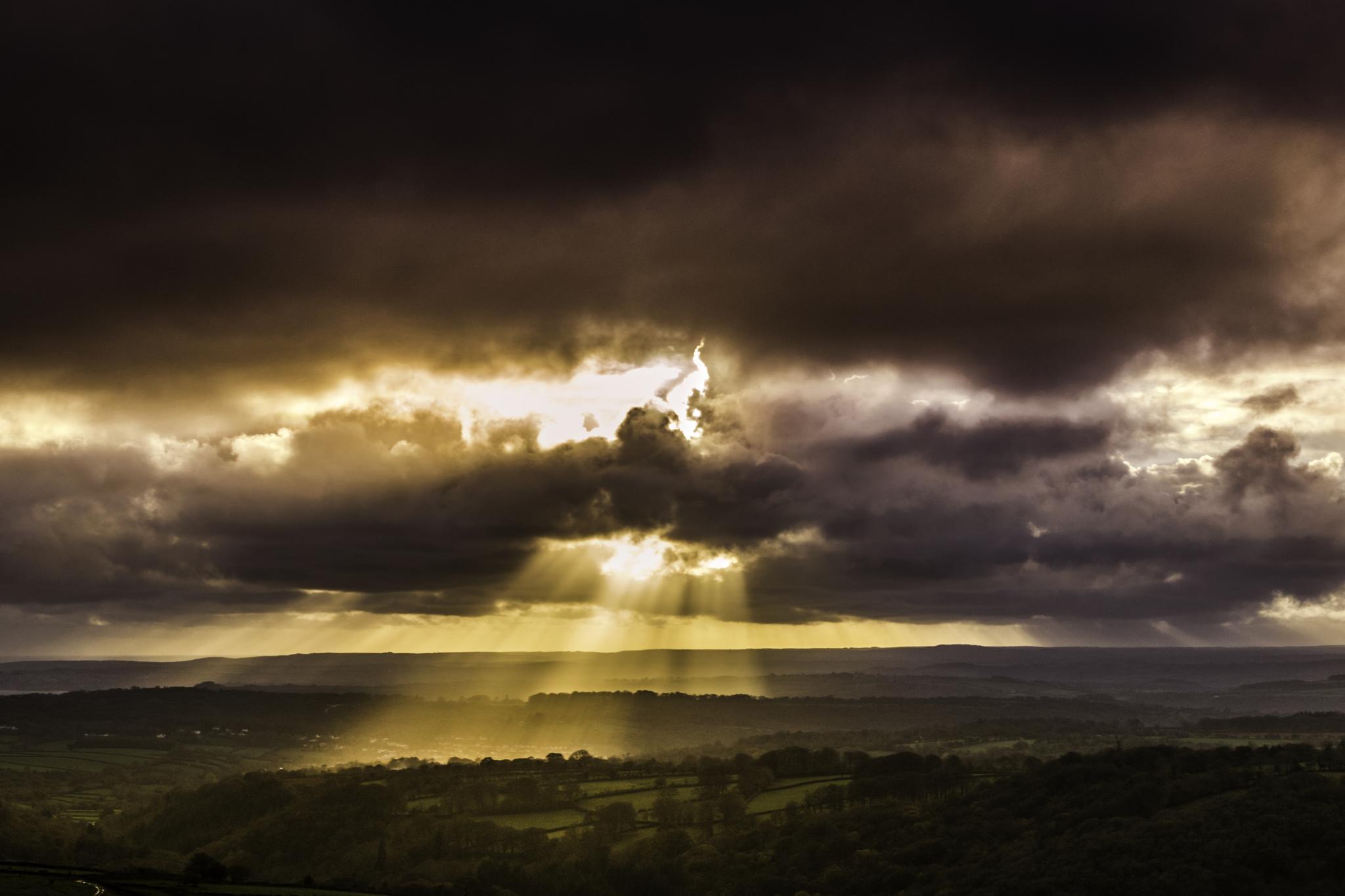 sunbeams by phillip ticehurst