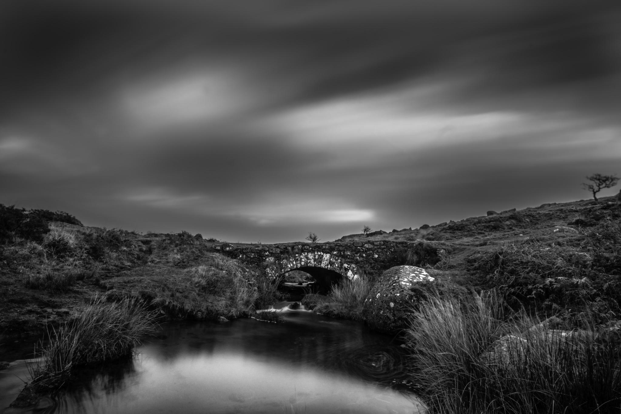 dartmoor bleak stream by phillip ticehurst