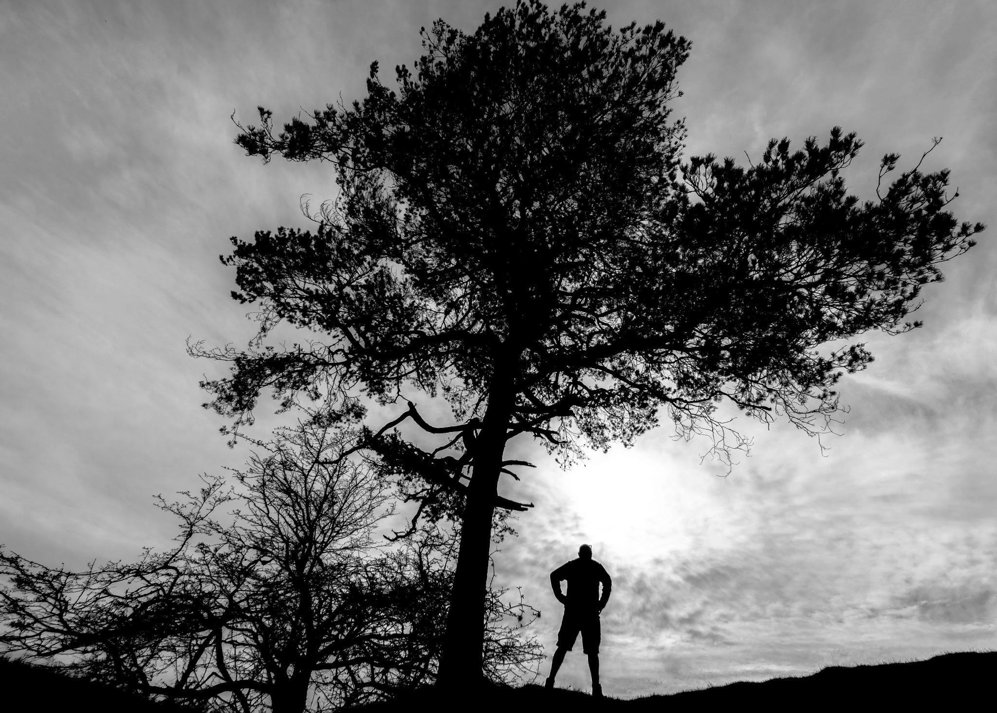 selfie silhouette by phillip ticehurst