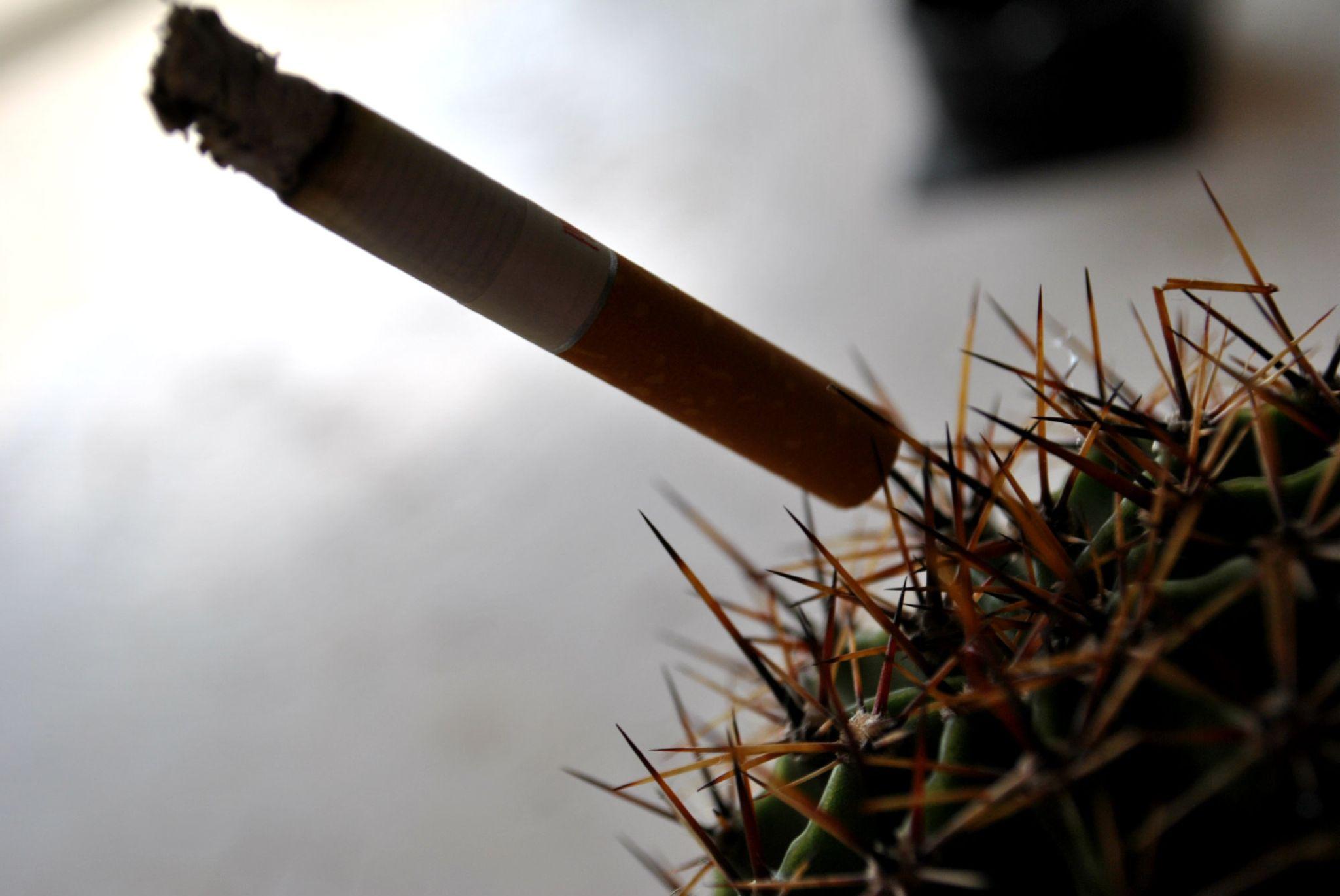 Smoking will kill you by Dino Hurić