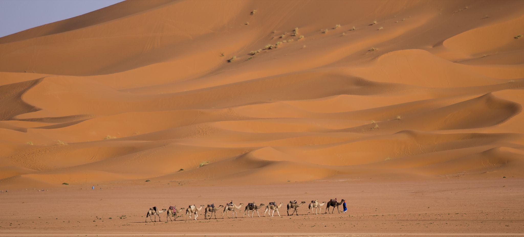 Desert of Morocco by PaoloNavone