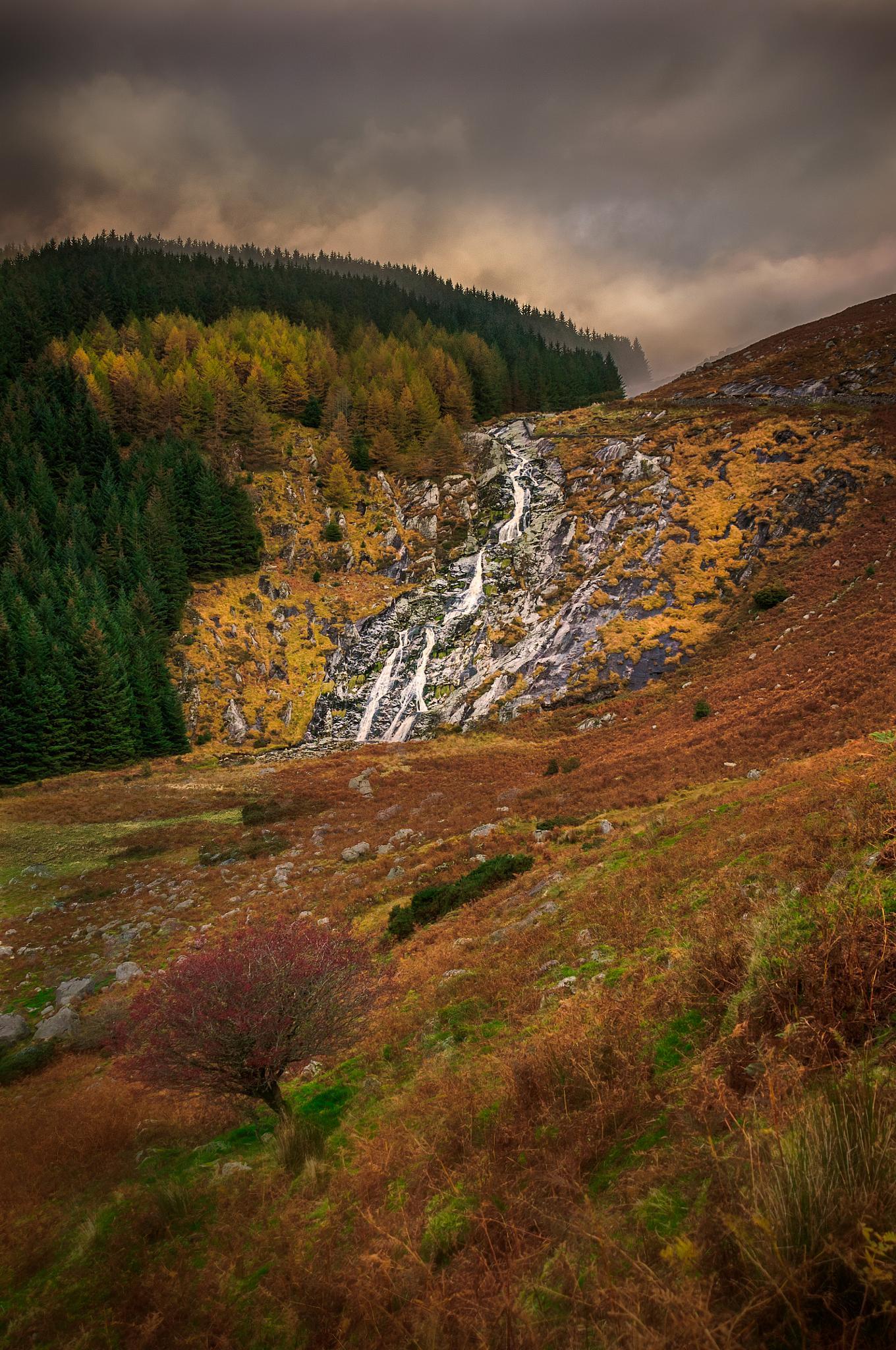 Photo in Landscape #ireland #wicklow mountains #glenmacnass waterfall #landscape #waterfall #autumn