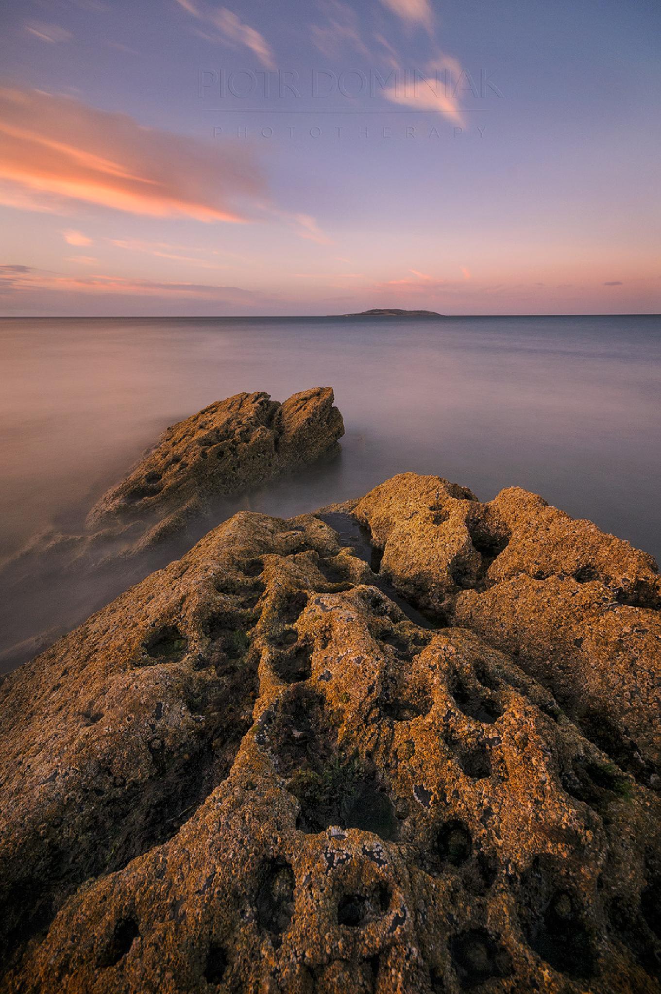 Orange ot the rocks. by Piotr Dominiak