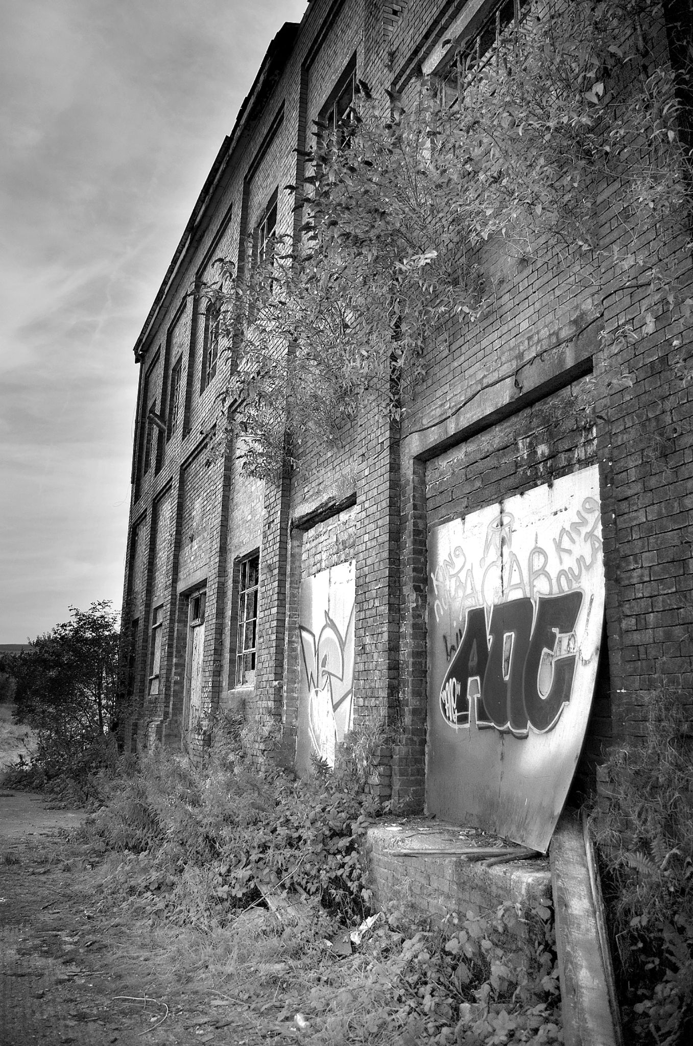 Decay and Dereliction by anthonyjames