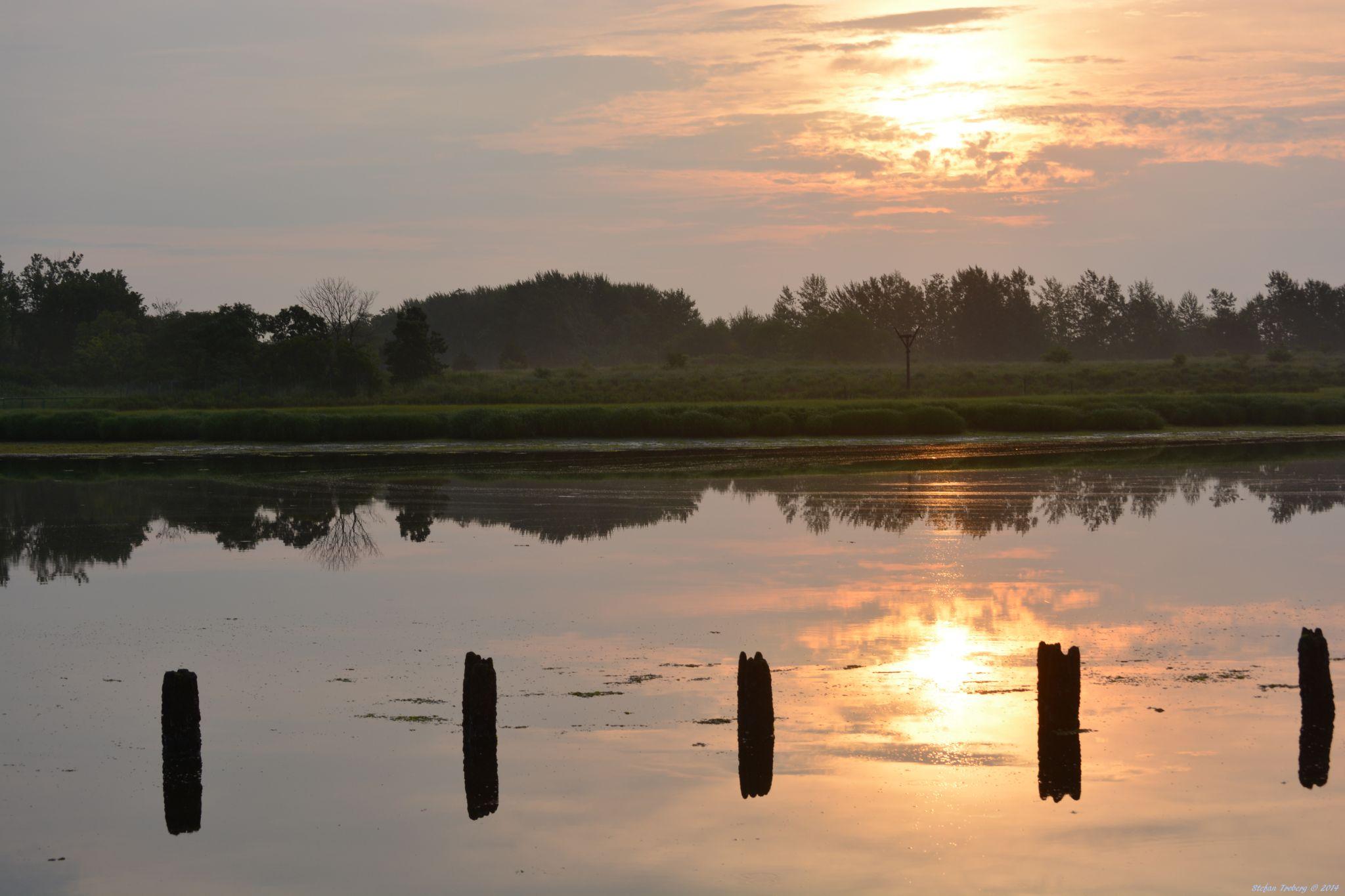 Sunrise at the watermarsh by Stefan Troberg