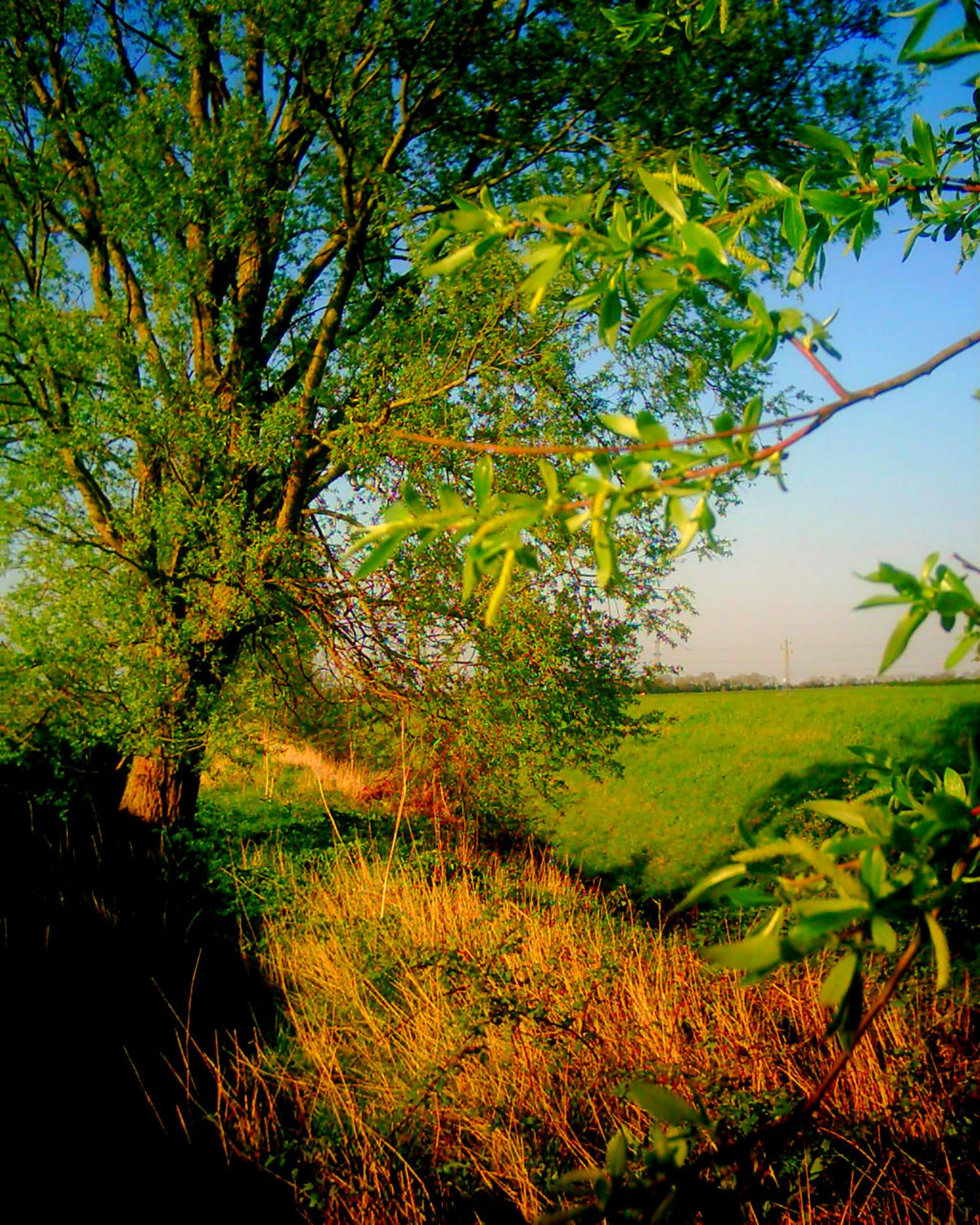 lincolshire fens by chris.adams.3557