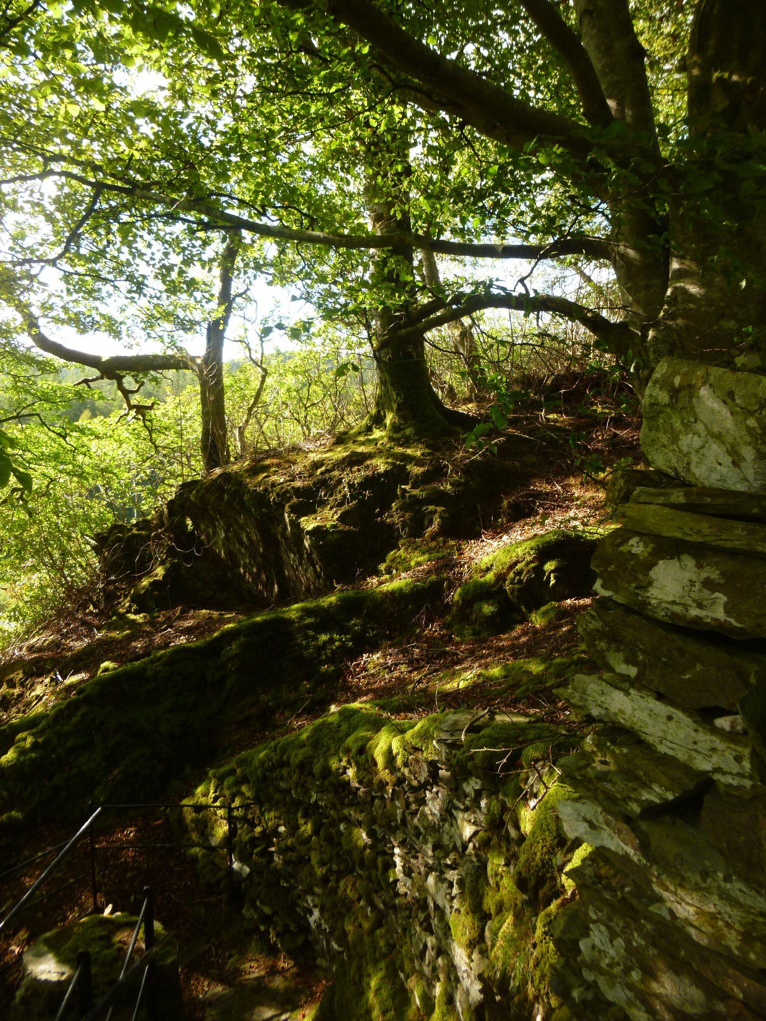 hafod, pont rhyd y groes , wales by chris.adams.3557