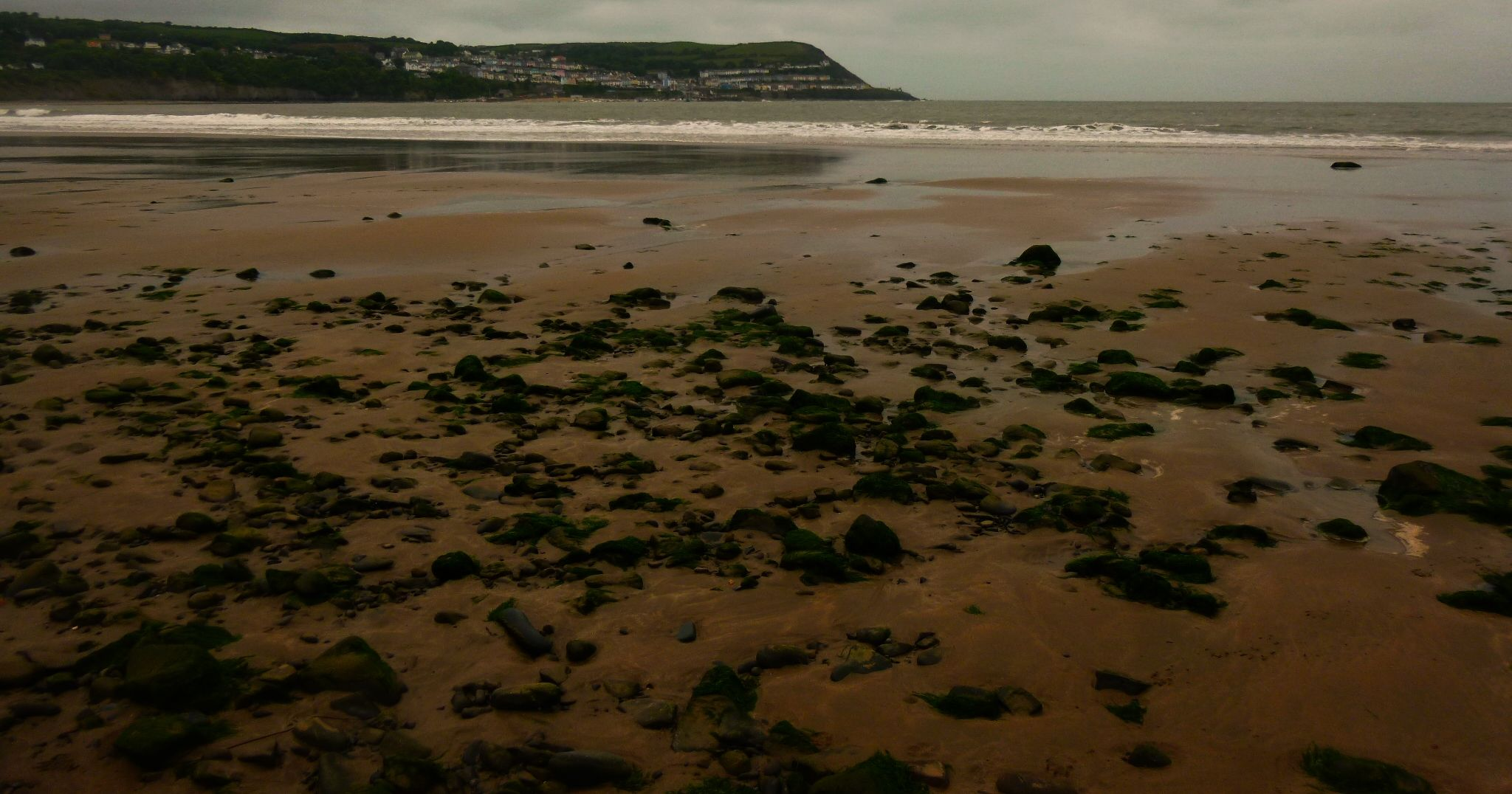 new quay wales by chris.adams.3557
