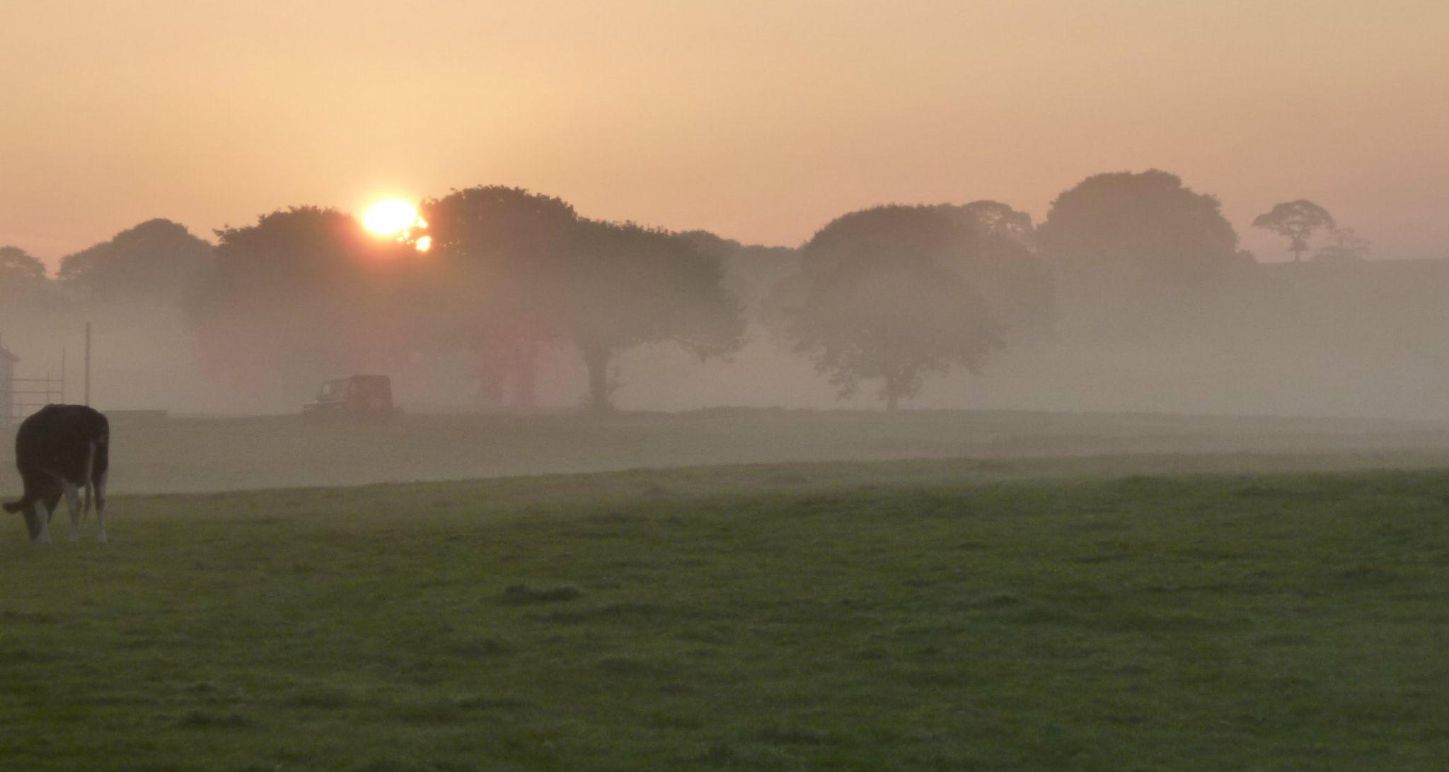misty sunrise by chris.adams.3557