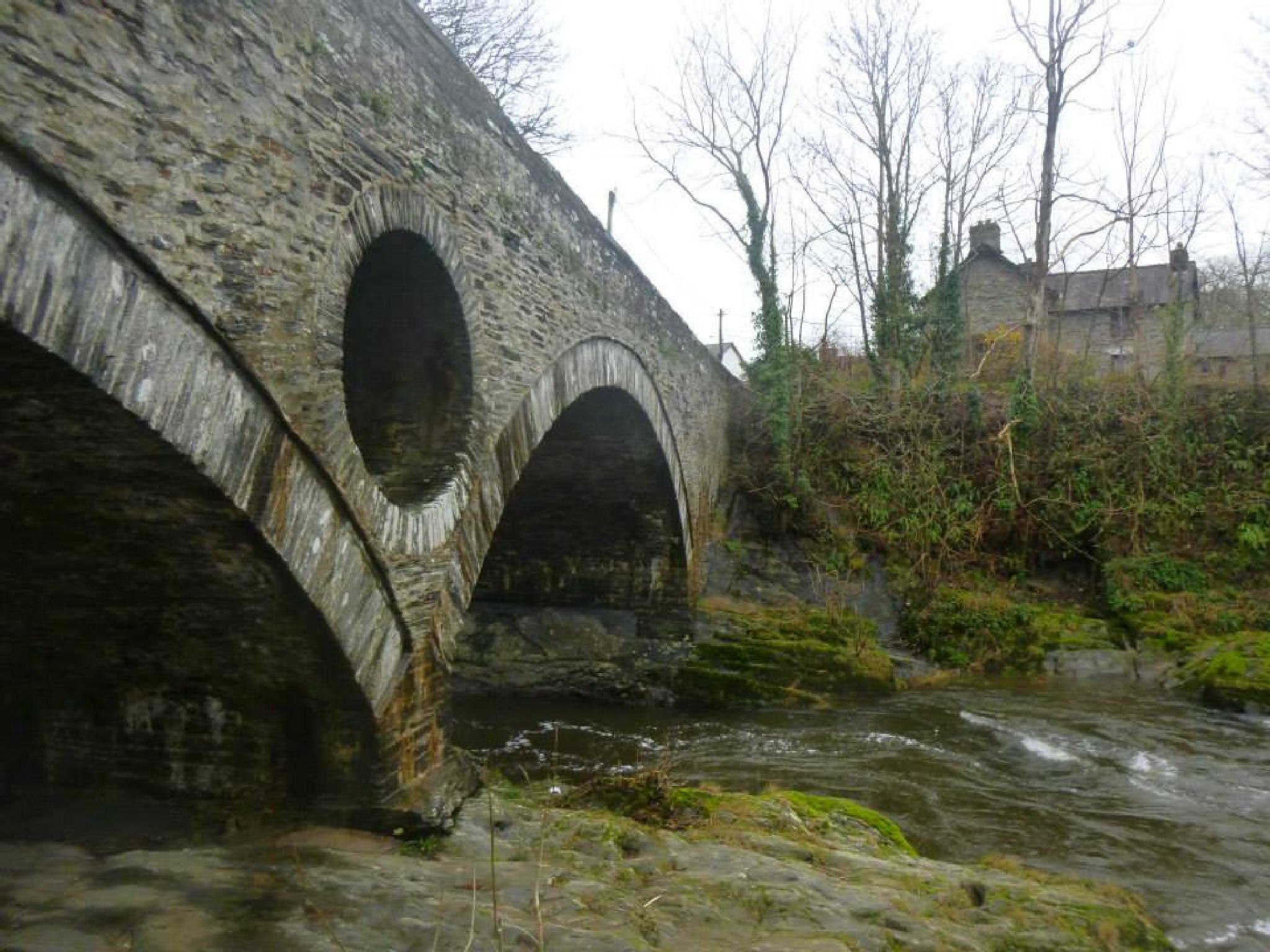 cenarth bridge by chris.adams.3557