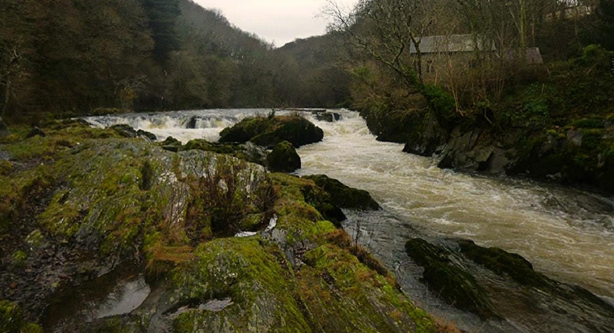 river teifi by chris.adams.3557