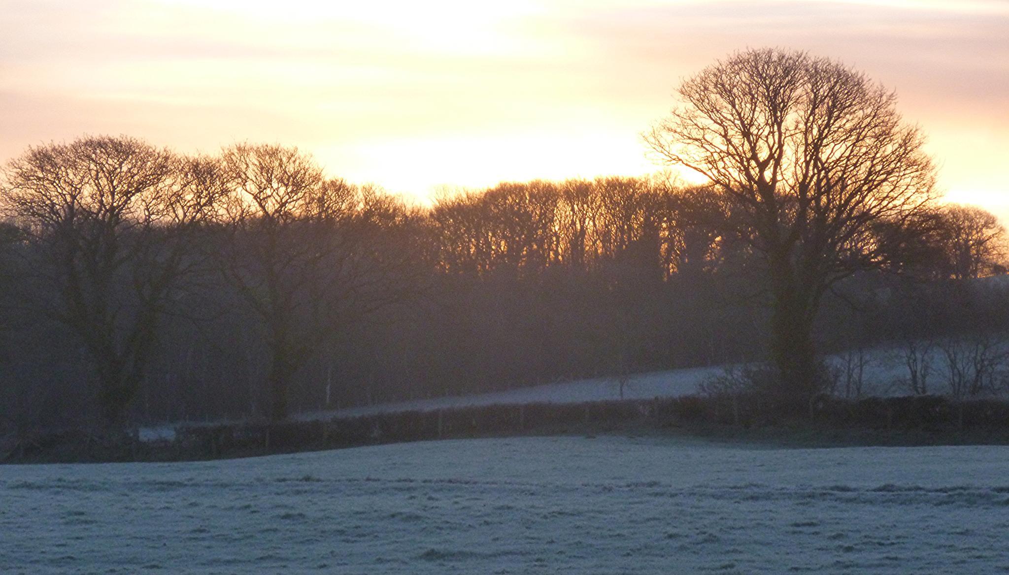 sunrise by chris.adams.3557