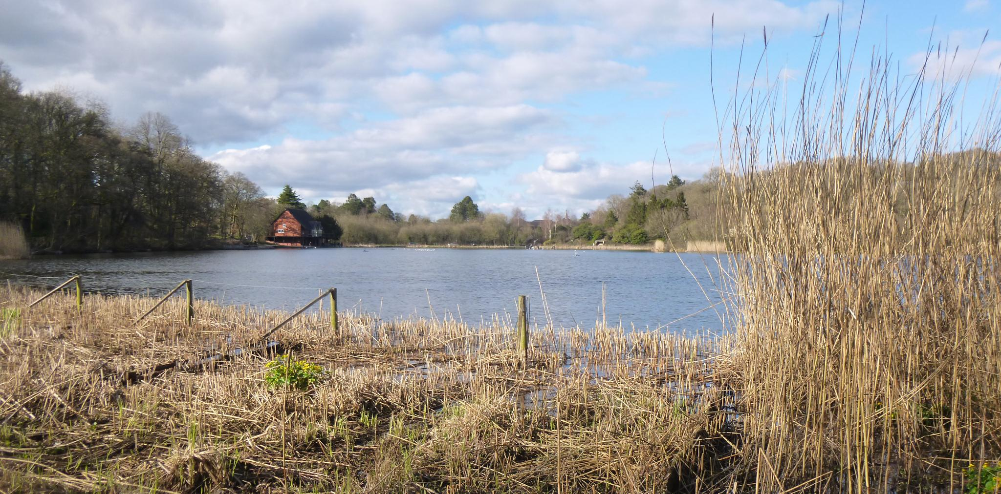 llandrindod wells lake by chris.adams.3557