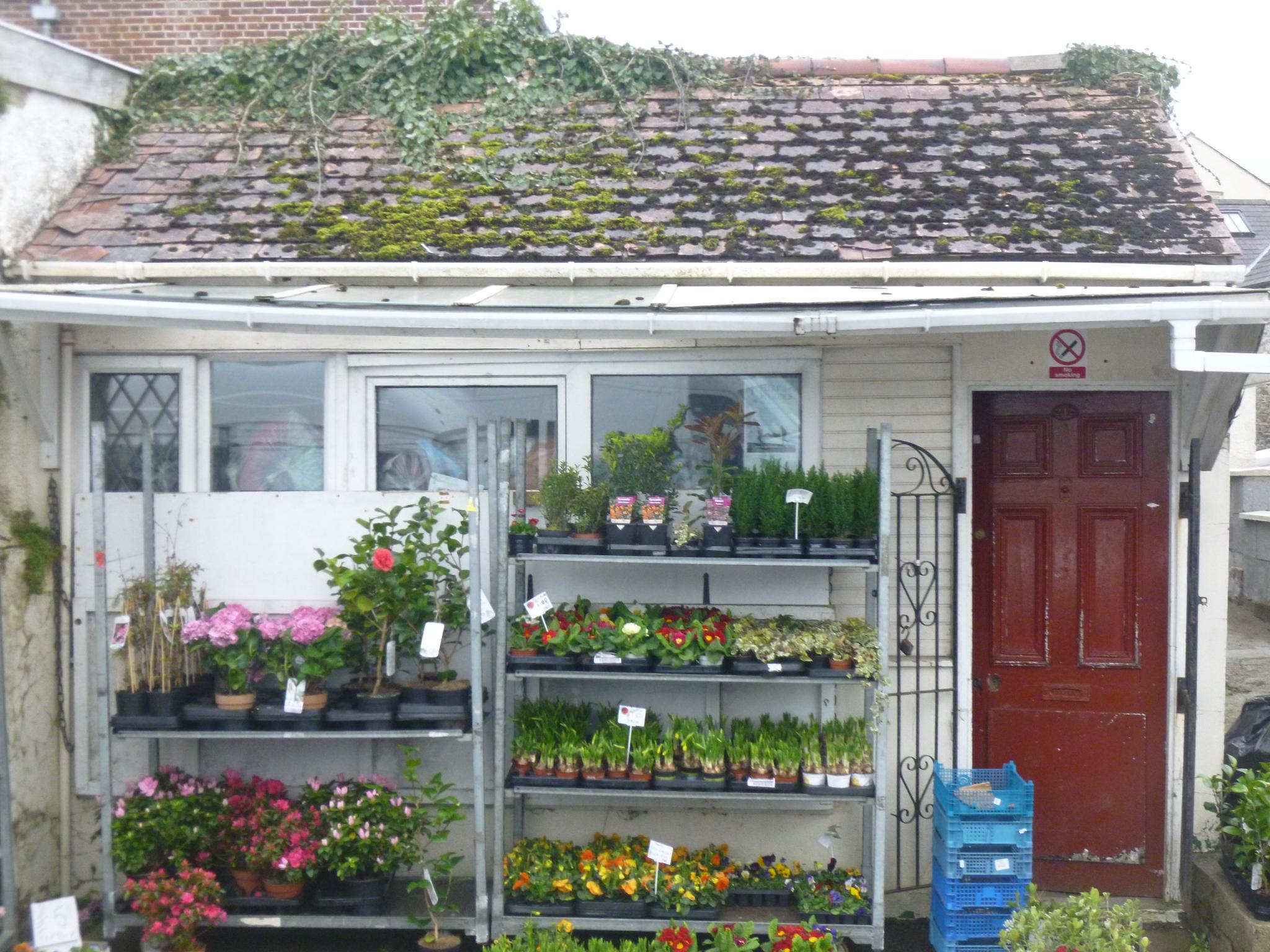 the old garden shop by chris.adams.3557