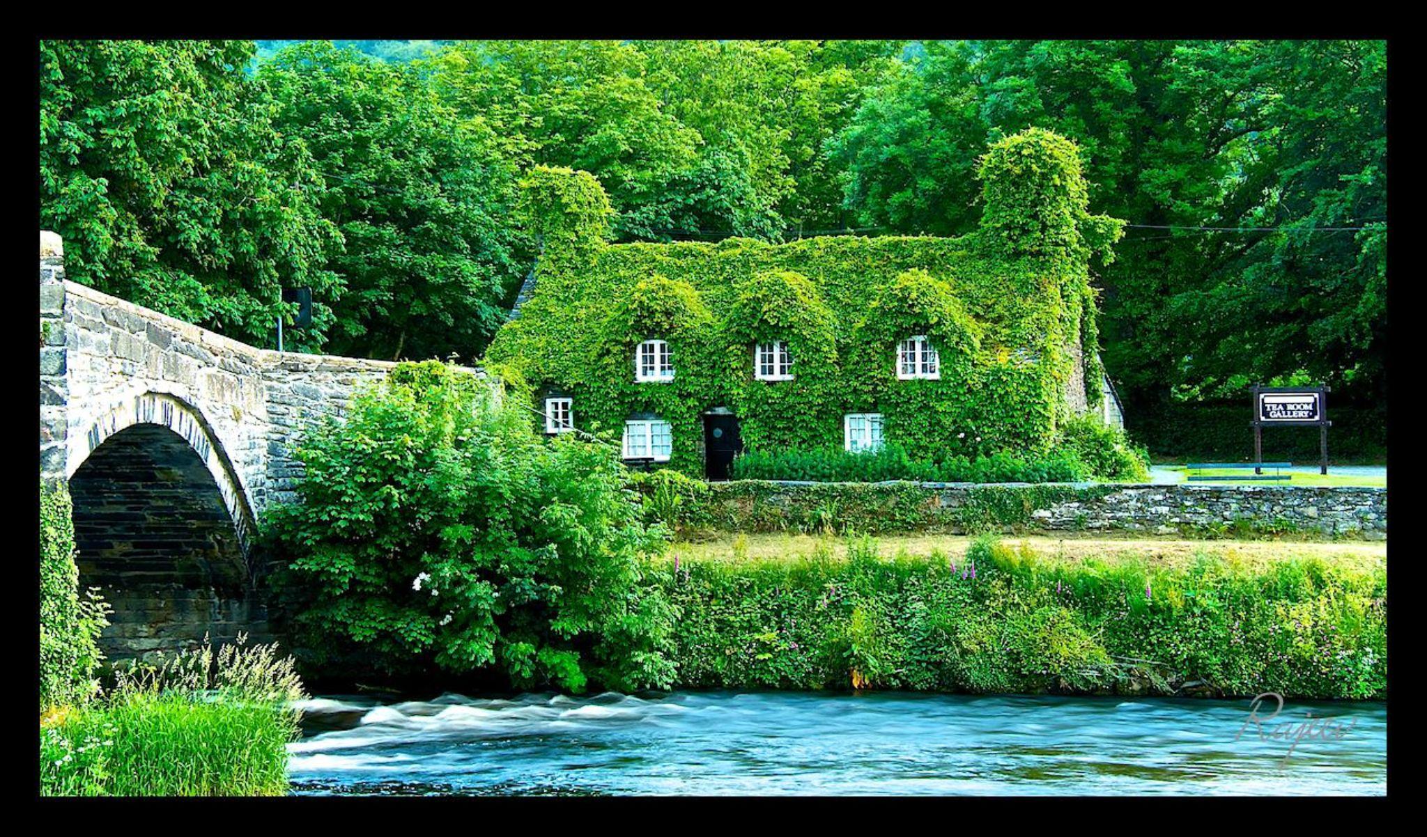 Llanrwst Tea Room, North Wales, UK by rajeevpeeka