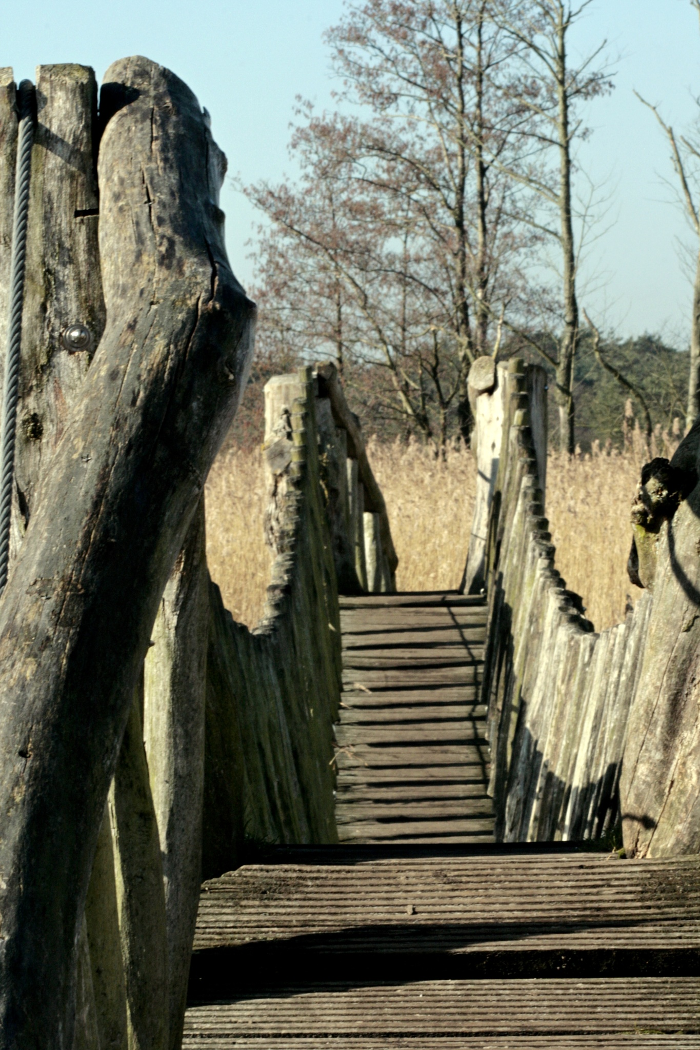 wooden suspension bridge by frankverhoeven1
