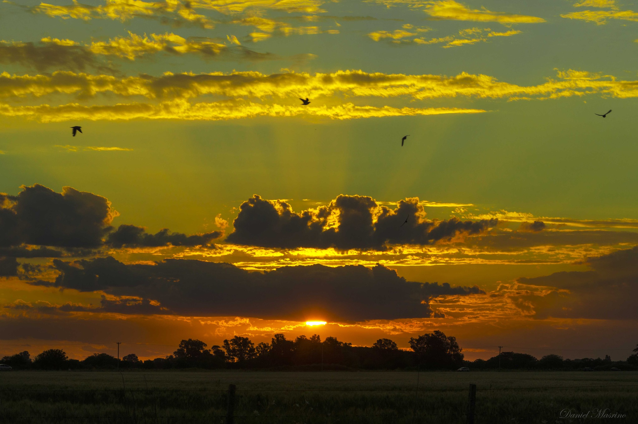 Atardecer campestre.  by dany