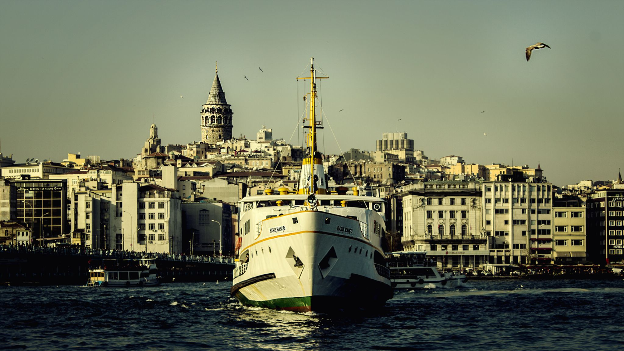 Untitled by Mehmet UÇKUN
