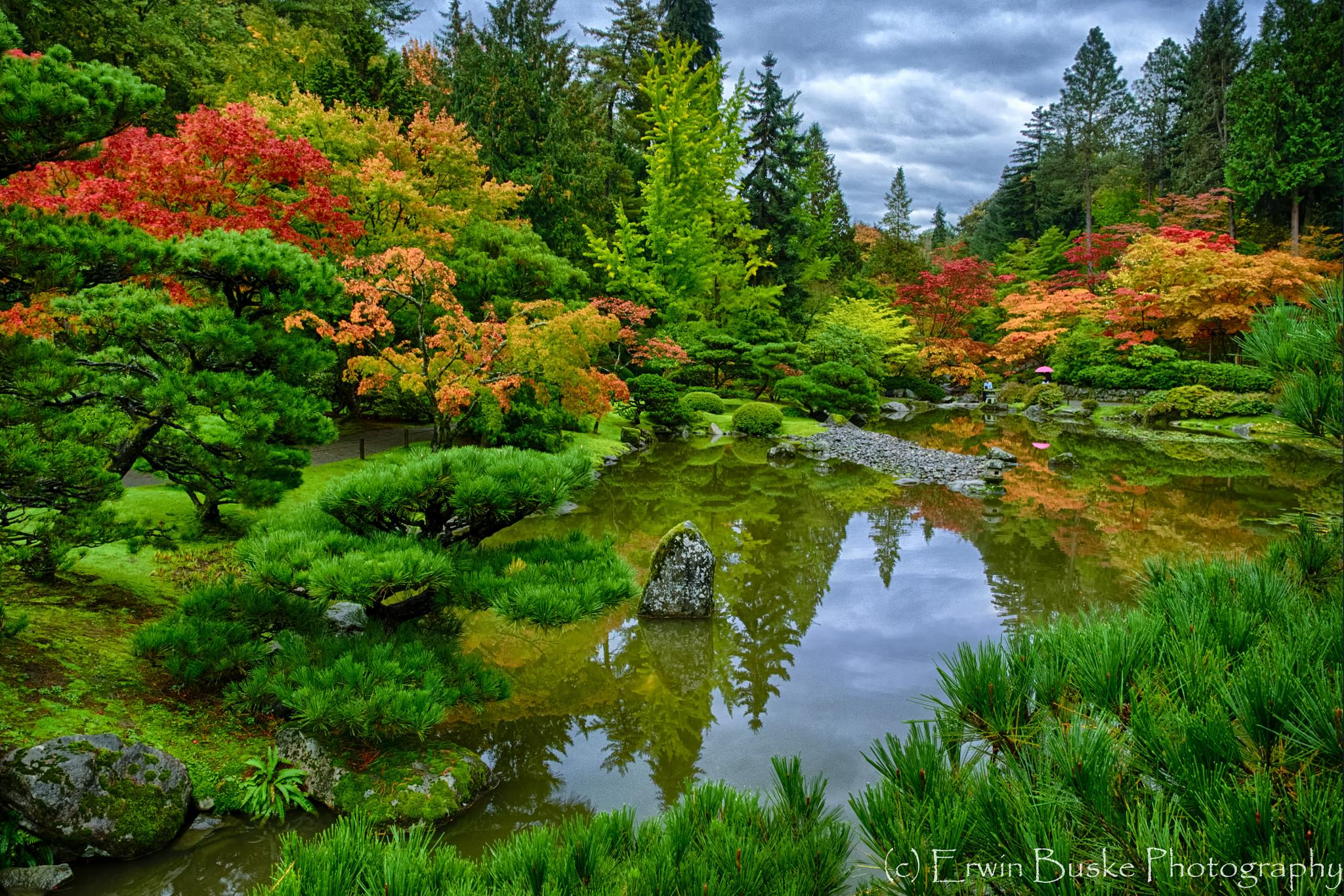 Reflecting Pond by Erwin Buske
