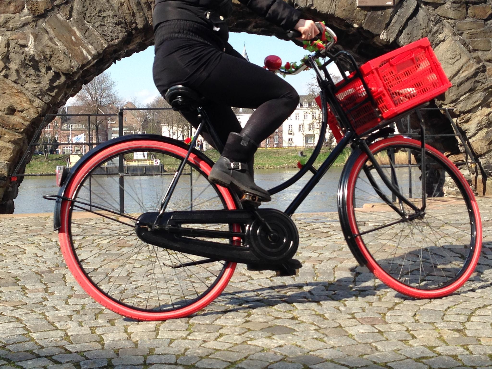 Cycling Maastricht by Lizet
