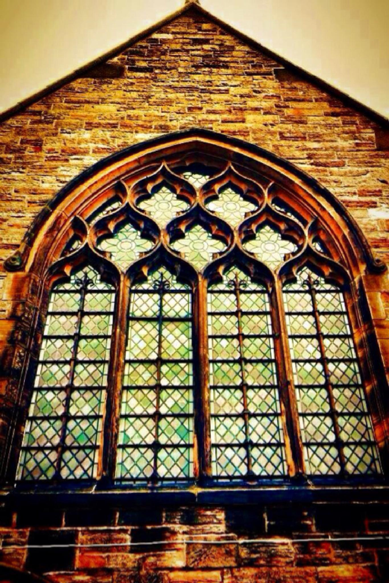Window ;)  by Sophie Davis