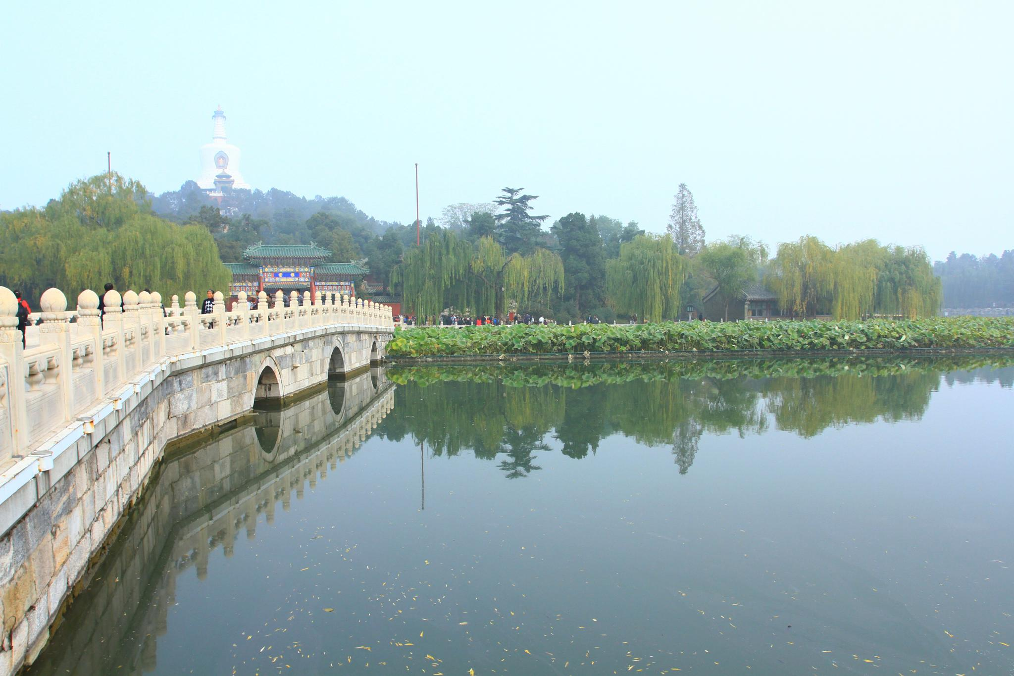 北京_北海公園 by 李葉坤