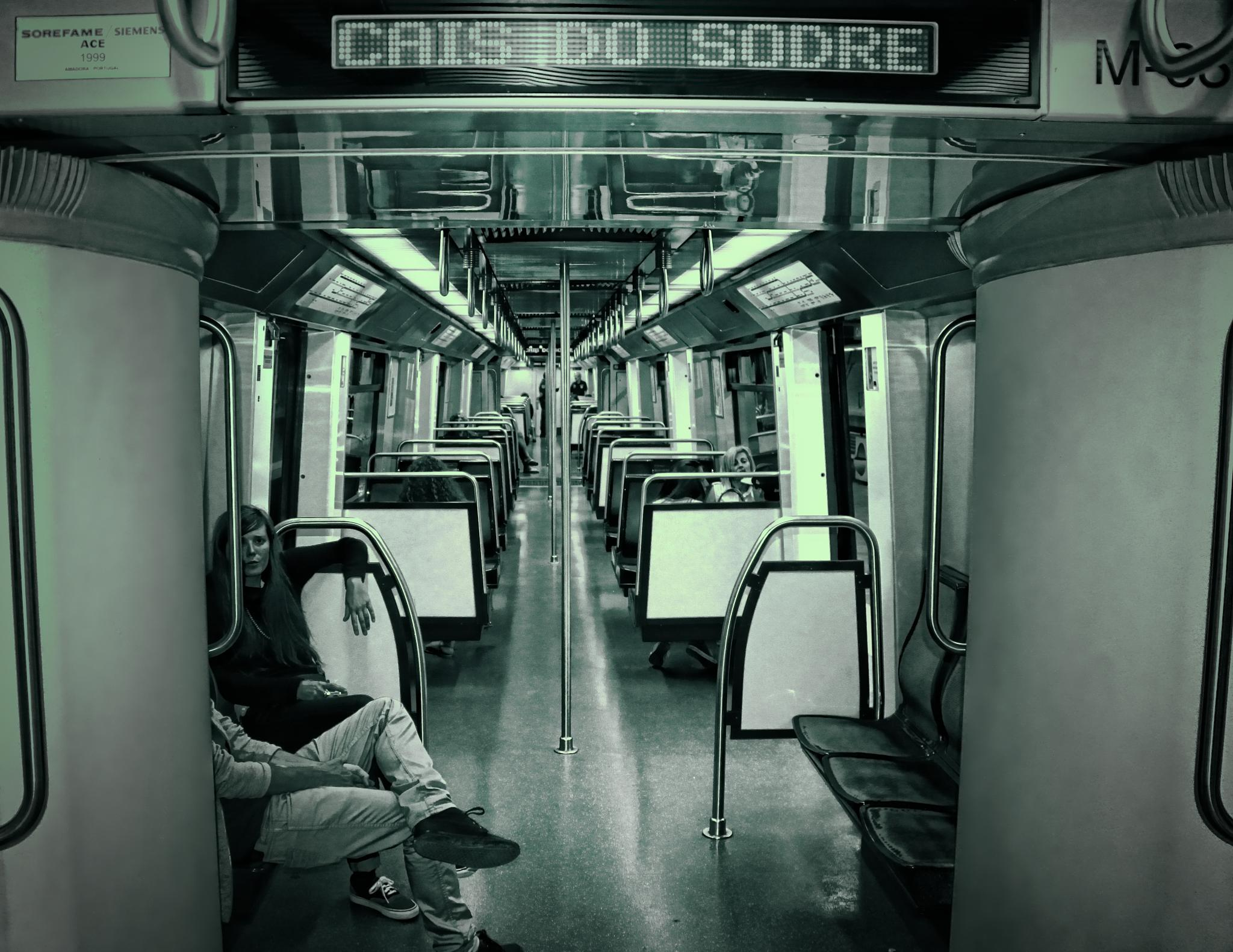 The Midnight Meat Train by orlando.nunes.311