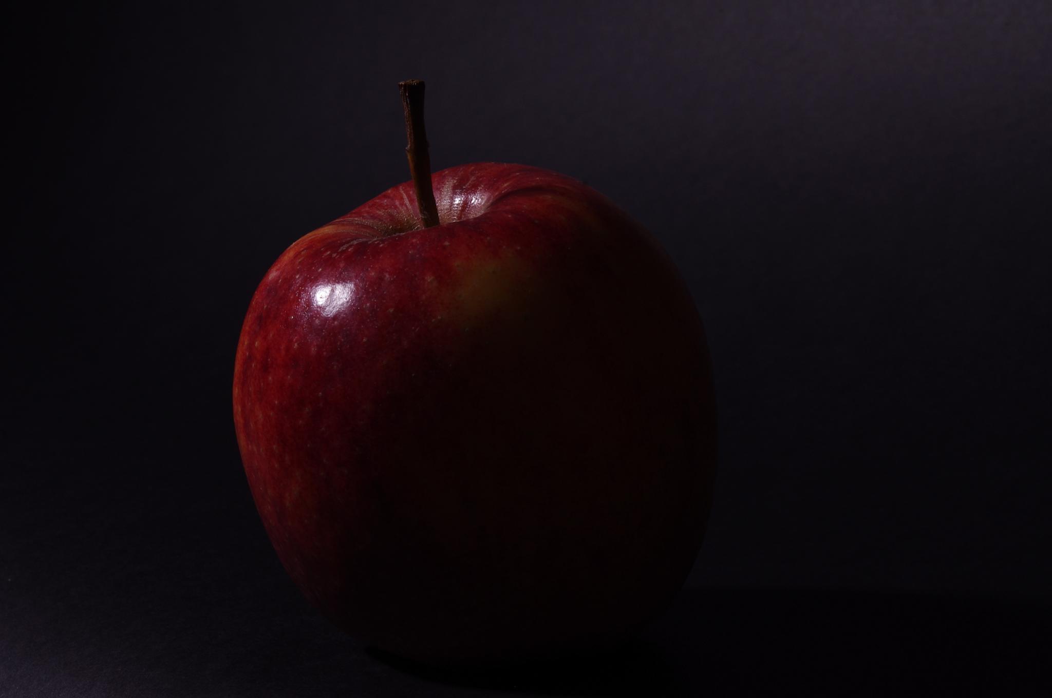 Chiaroscuro apple  by DanielleParry
