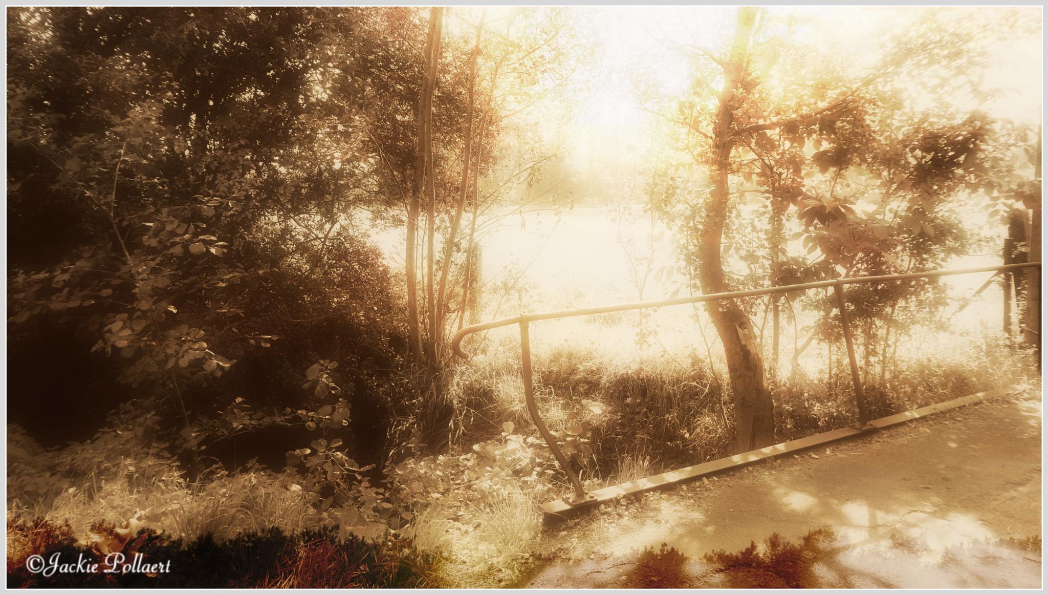 Le pont - The bridge by Jackie Pollaert