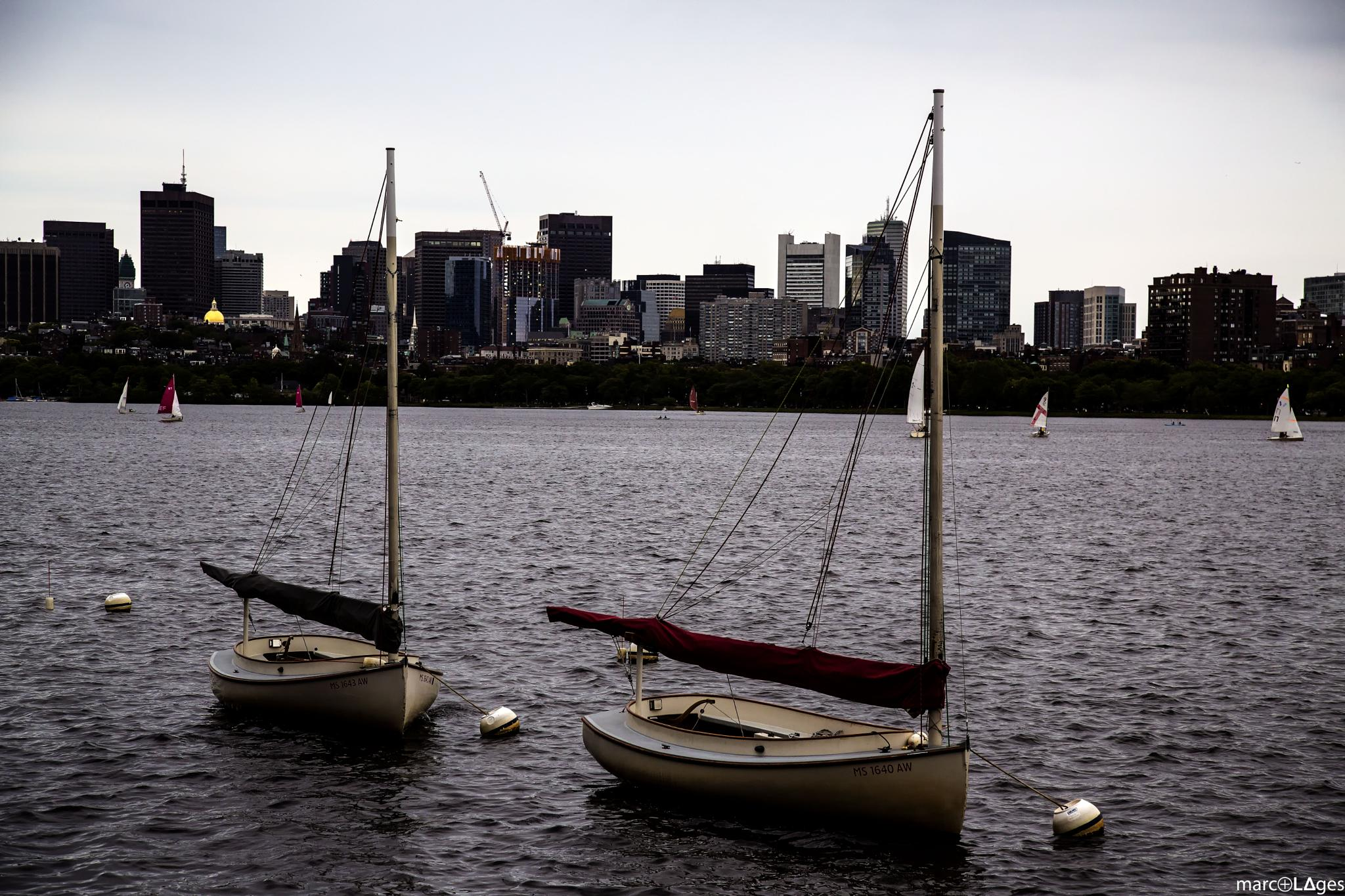 Charles River by marc⊕L∆ges