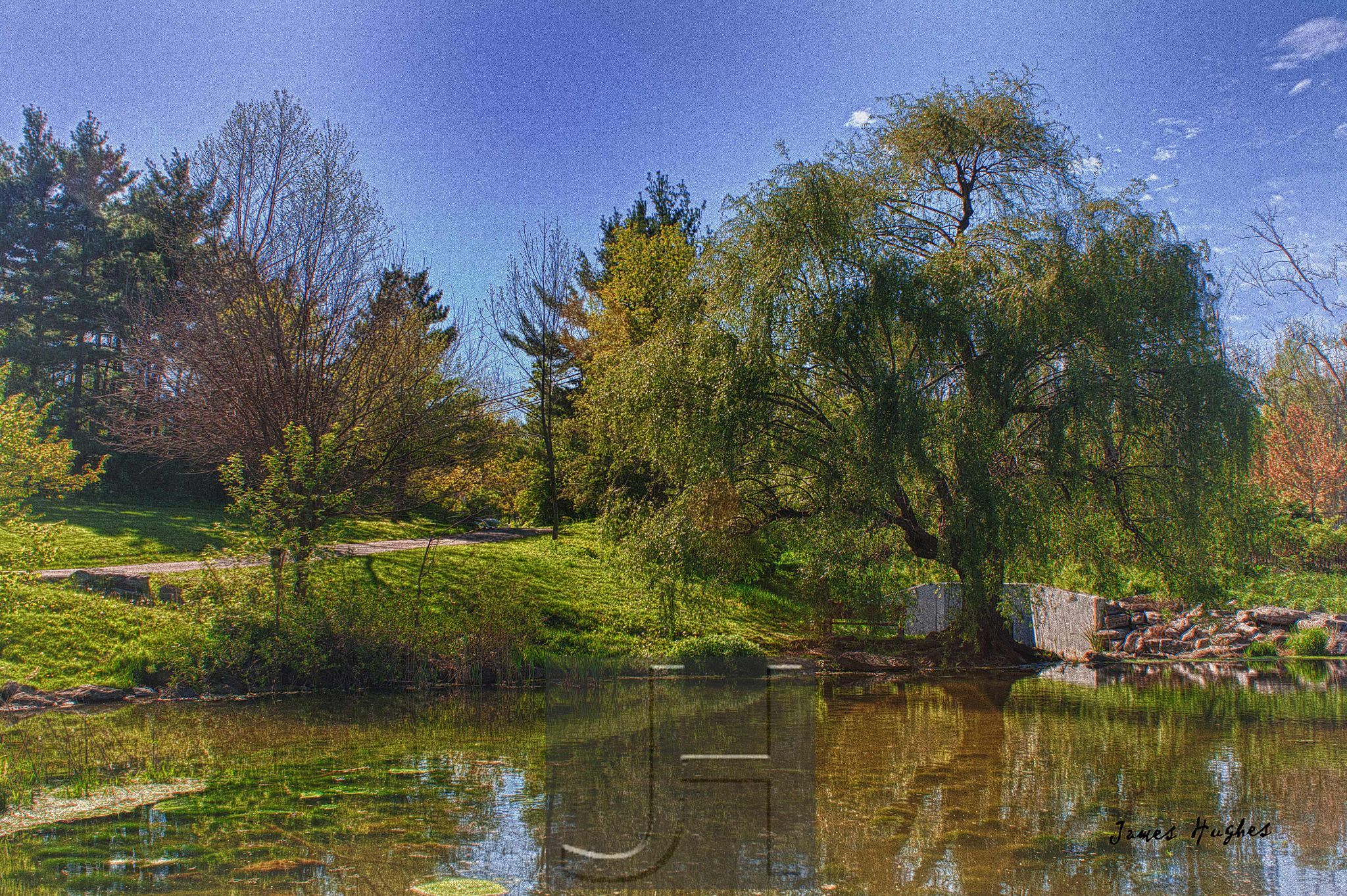 Pond by James Hughes Photography