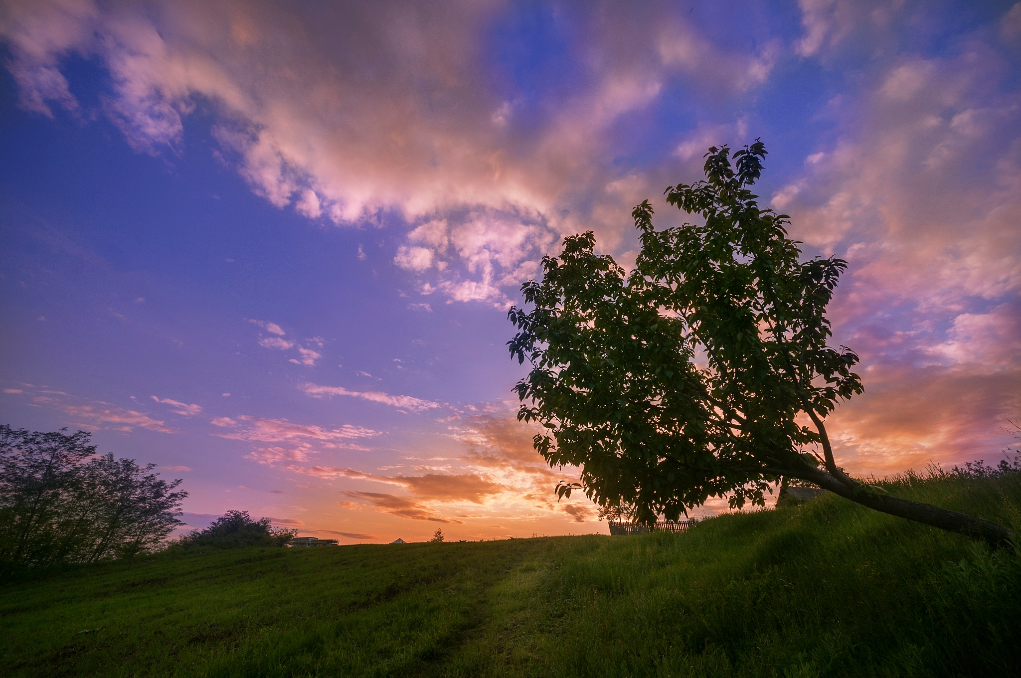 Photo in Landscape #sunset #contryside #landscape #tree #sky #clouds