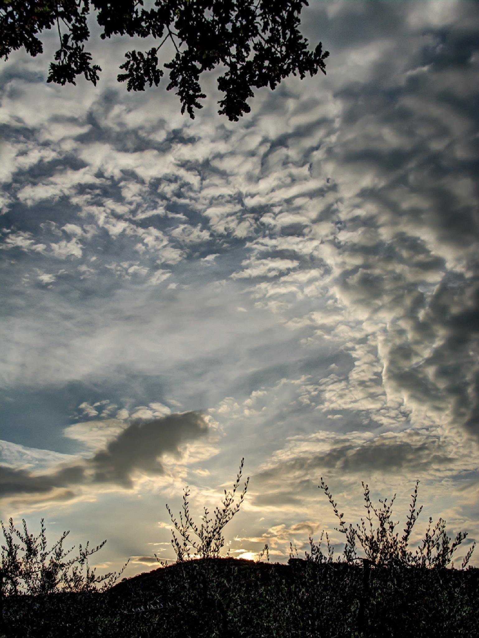morning sky by SeshJustme