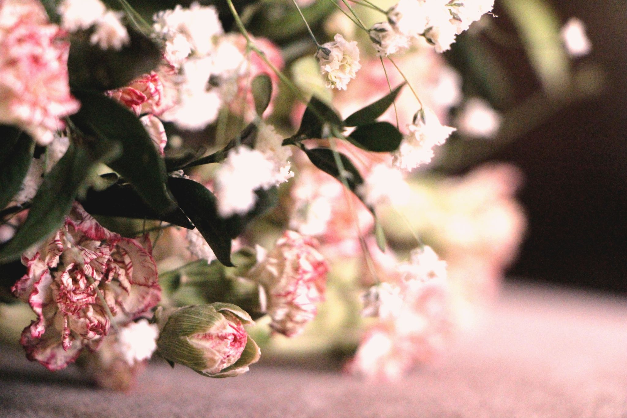 pink dream.. by Sule Betul Ulker
