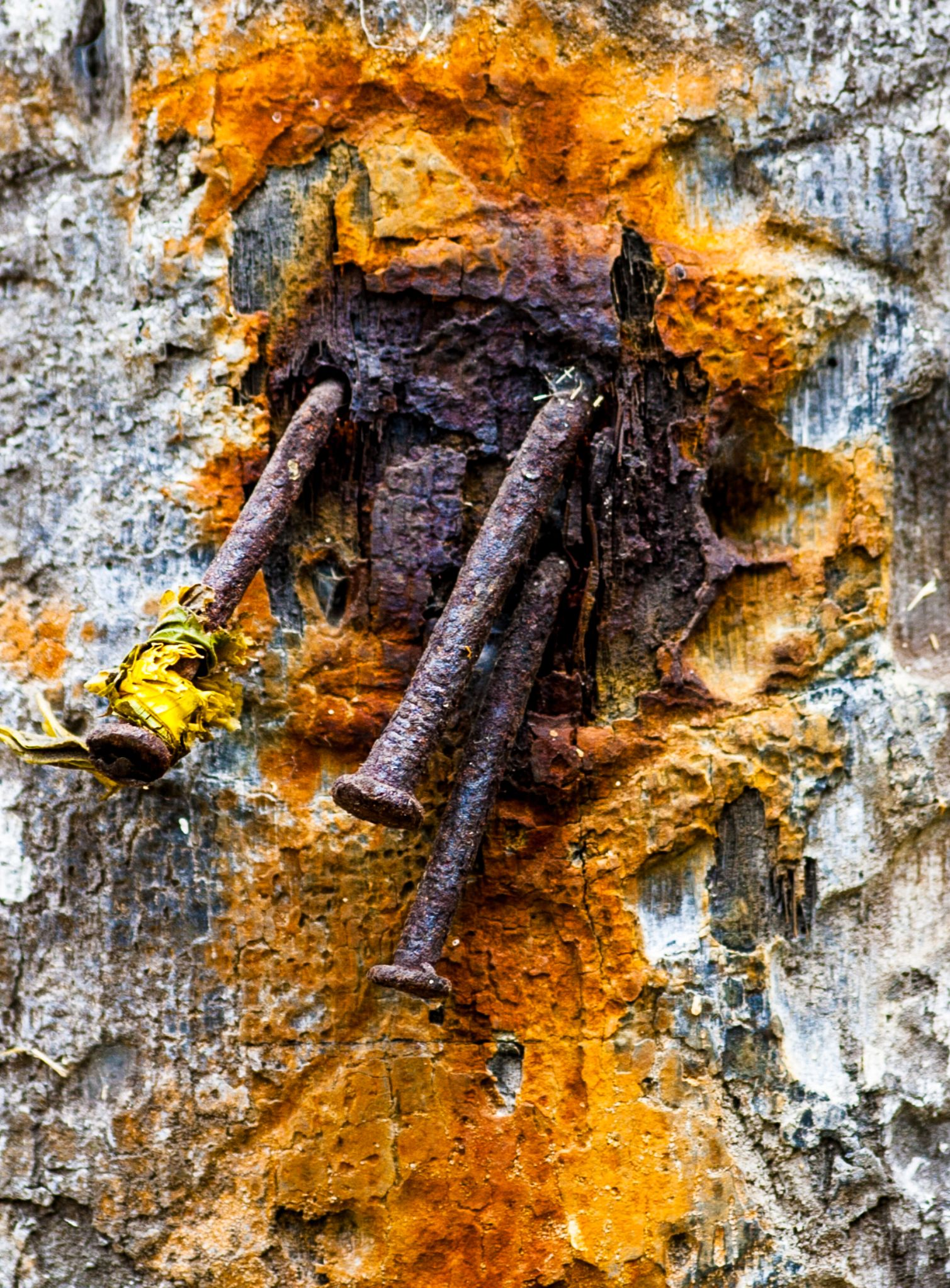 RUST... by Harry Smit