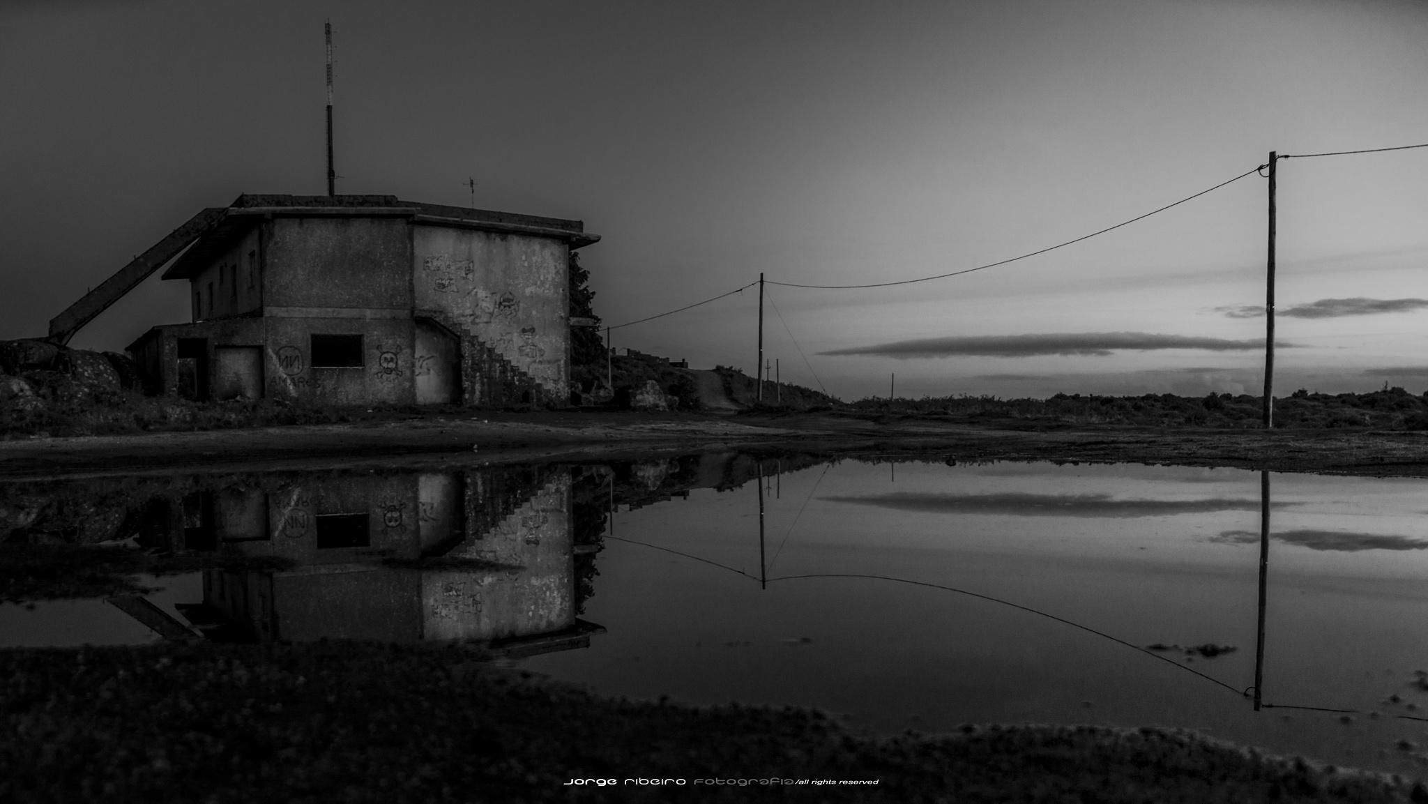Alone... by franciscojorge.dominguesribeiro