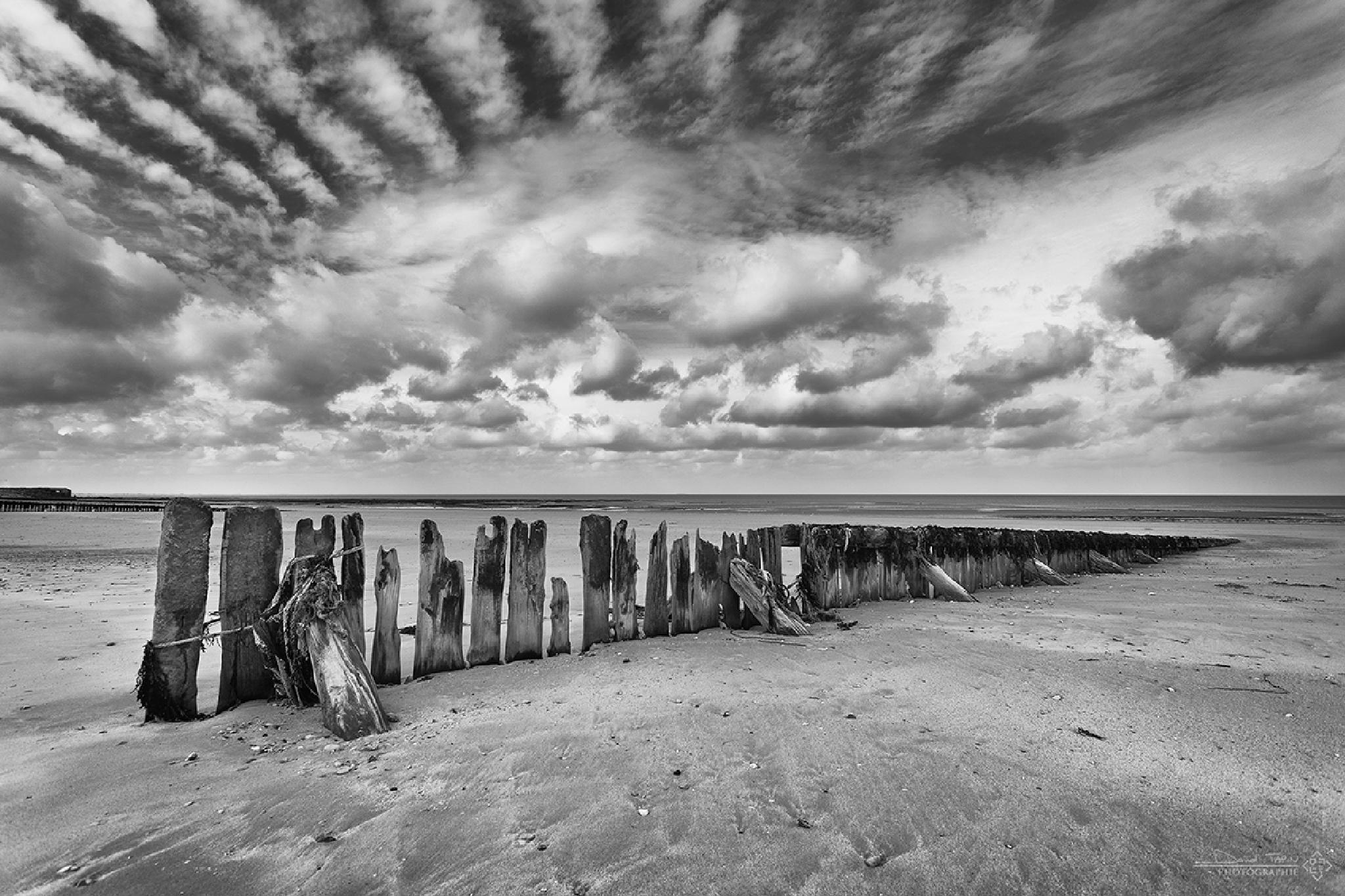 Brise lame I by David TAPIN - D.T. Photographe