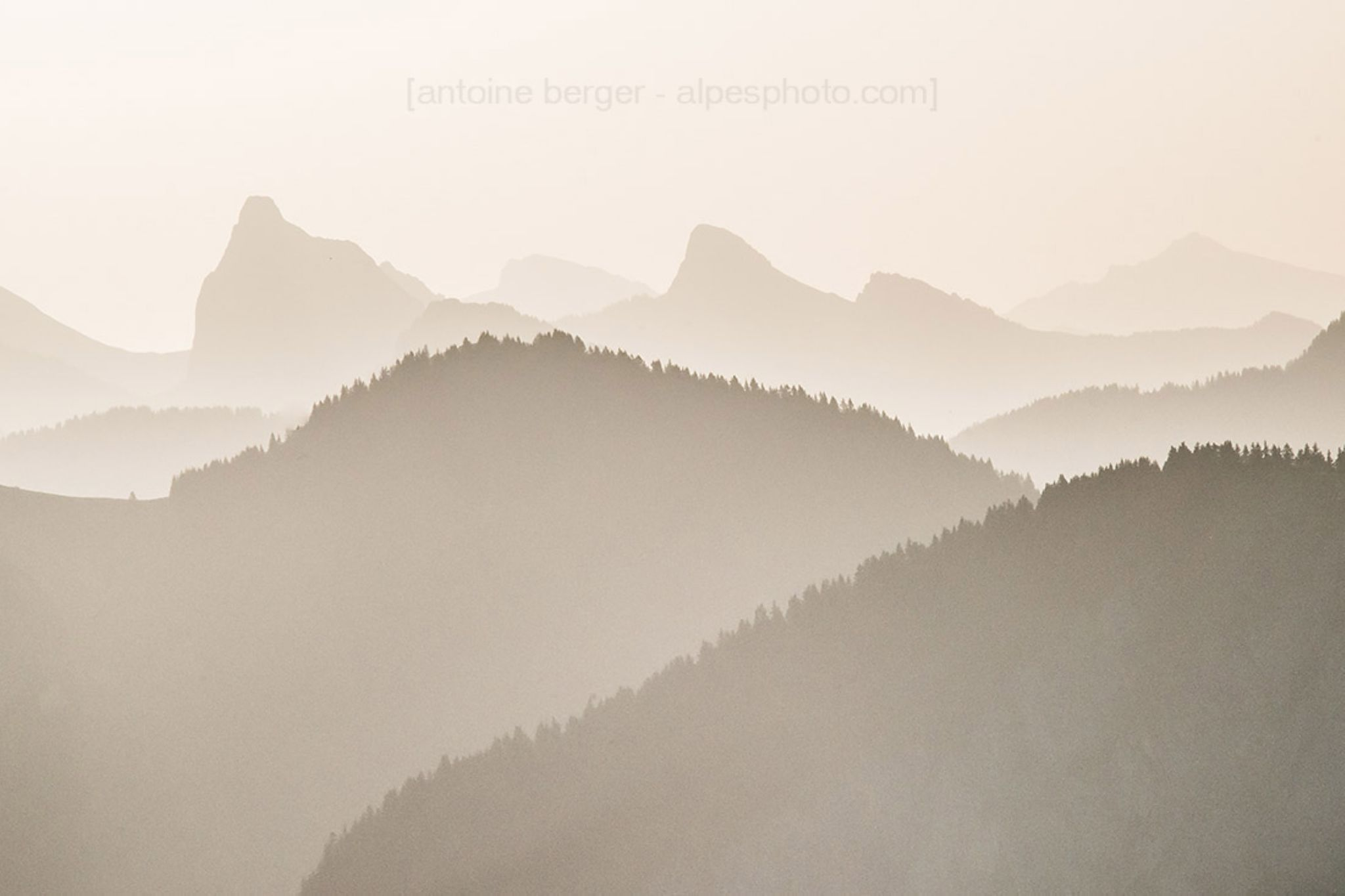 shades of sepia by Antoine Berger