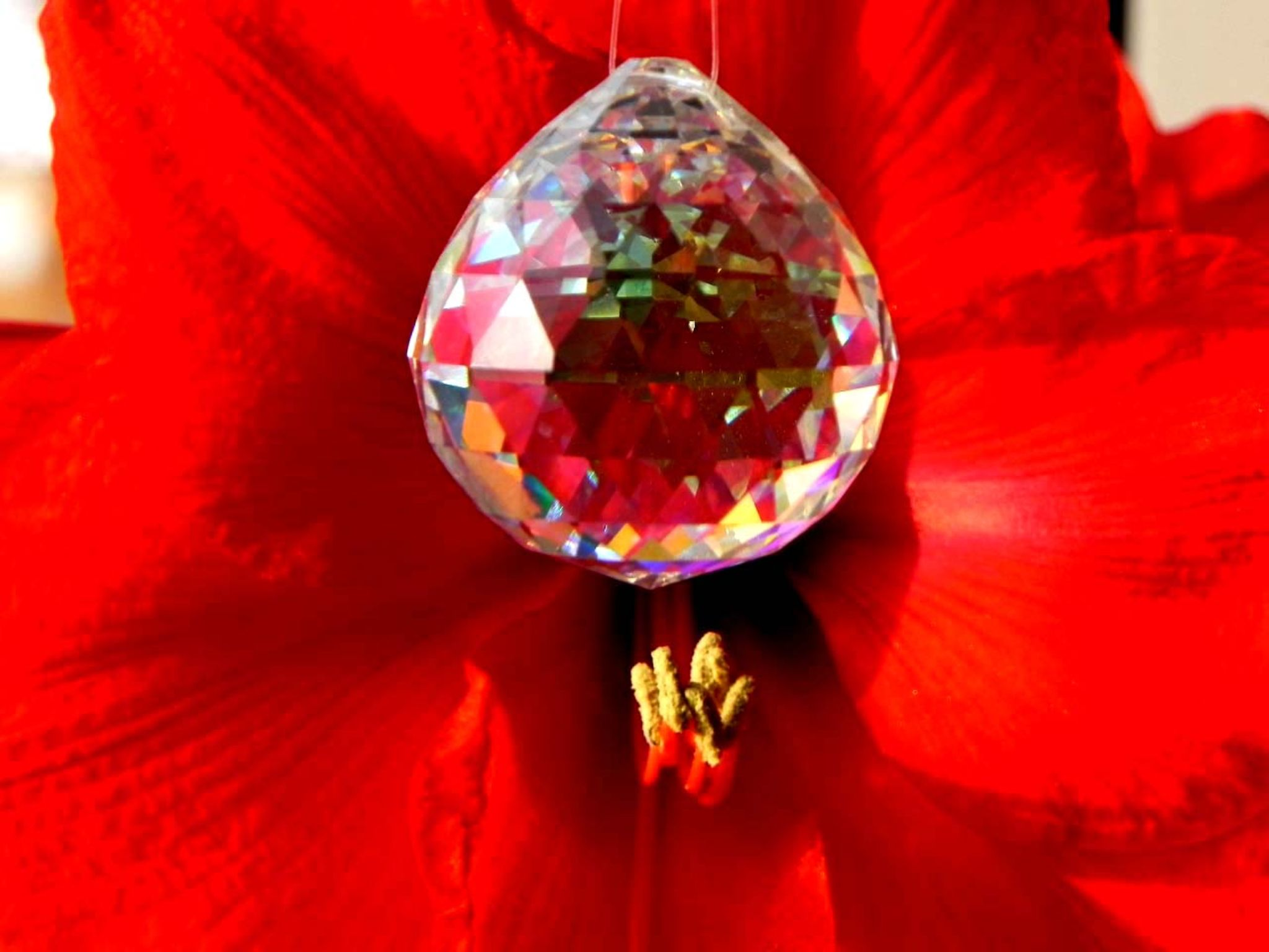Flower with cristal by christopher.kerkovius