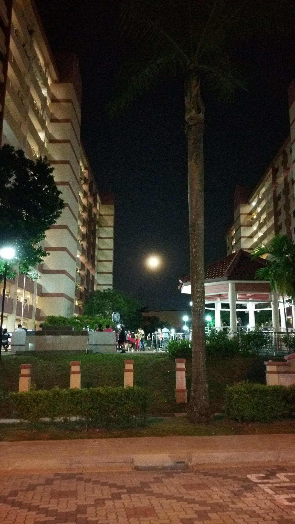 Dancing Under the Moon by leehenrysg