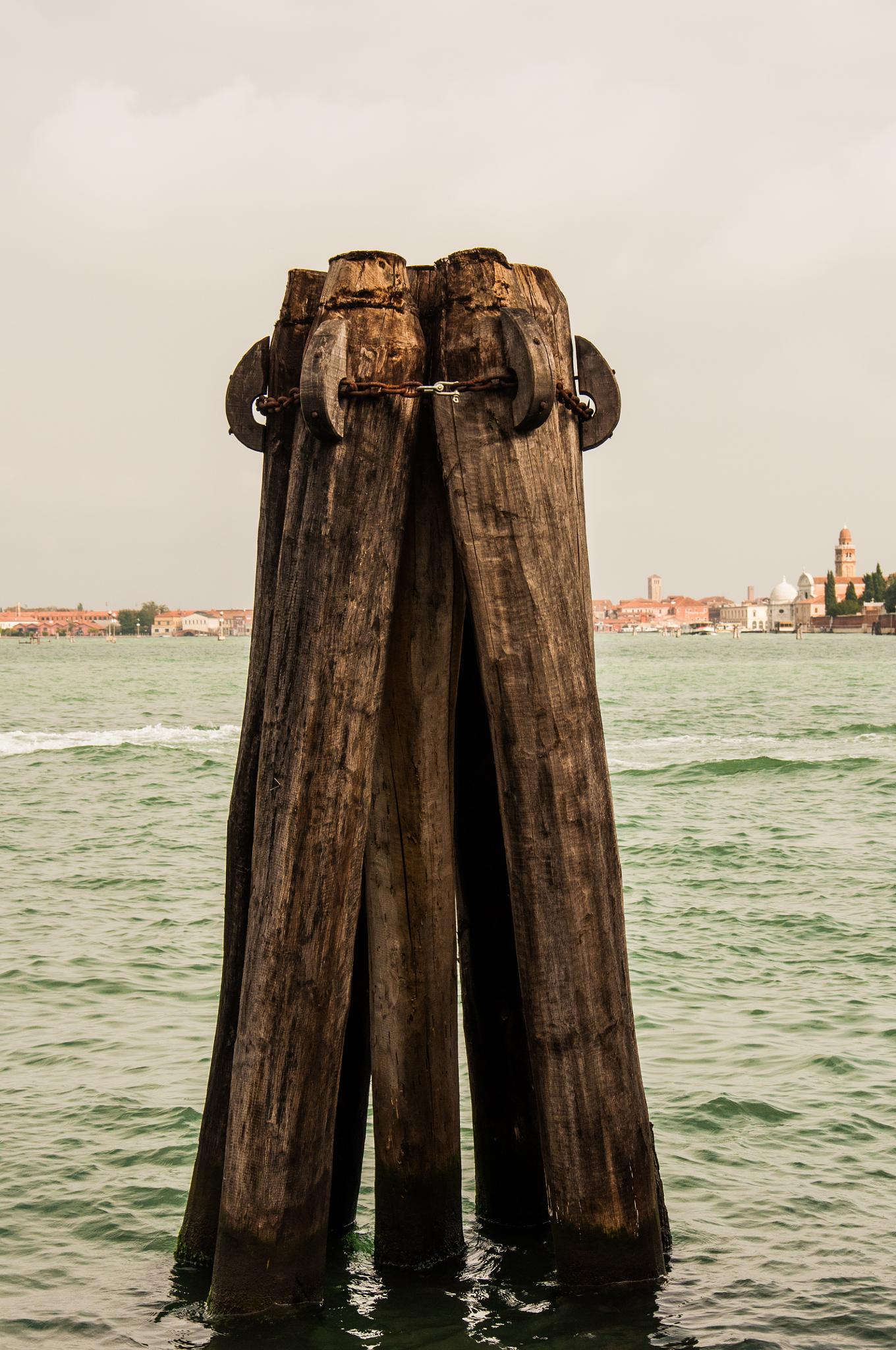 Venice wood pilings by Dimitris Gkoutzamanis