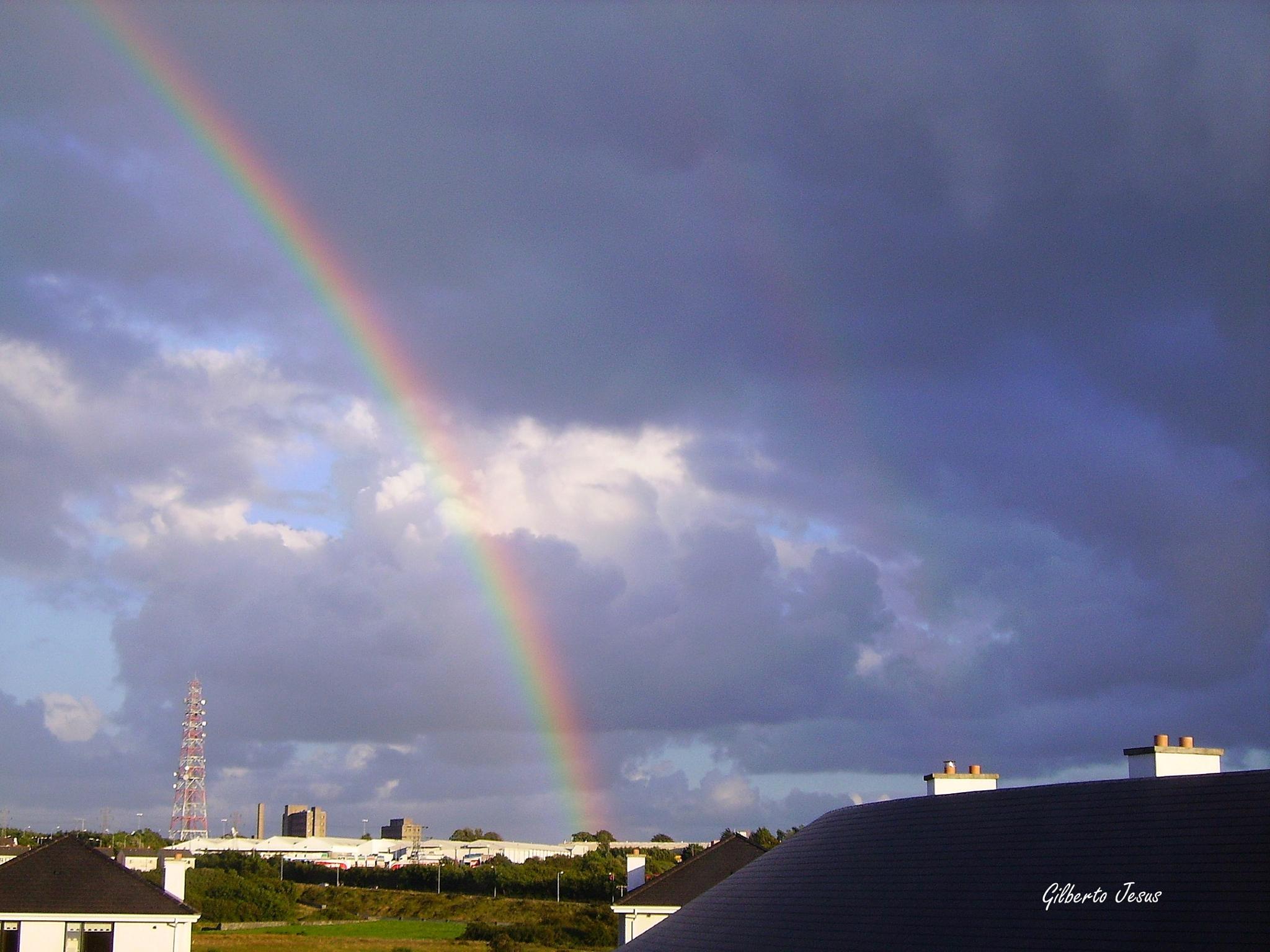Rainbow by Gilberto Jesus