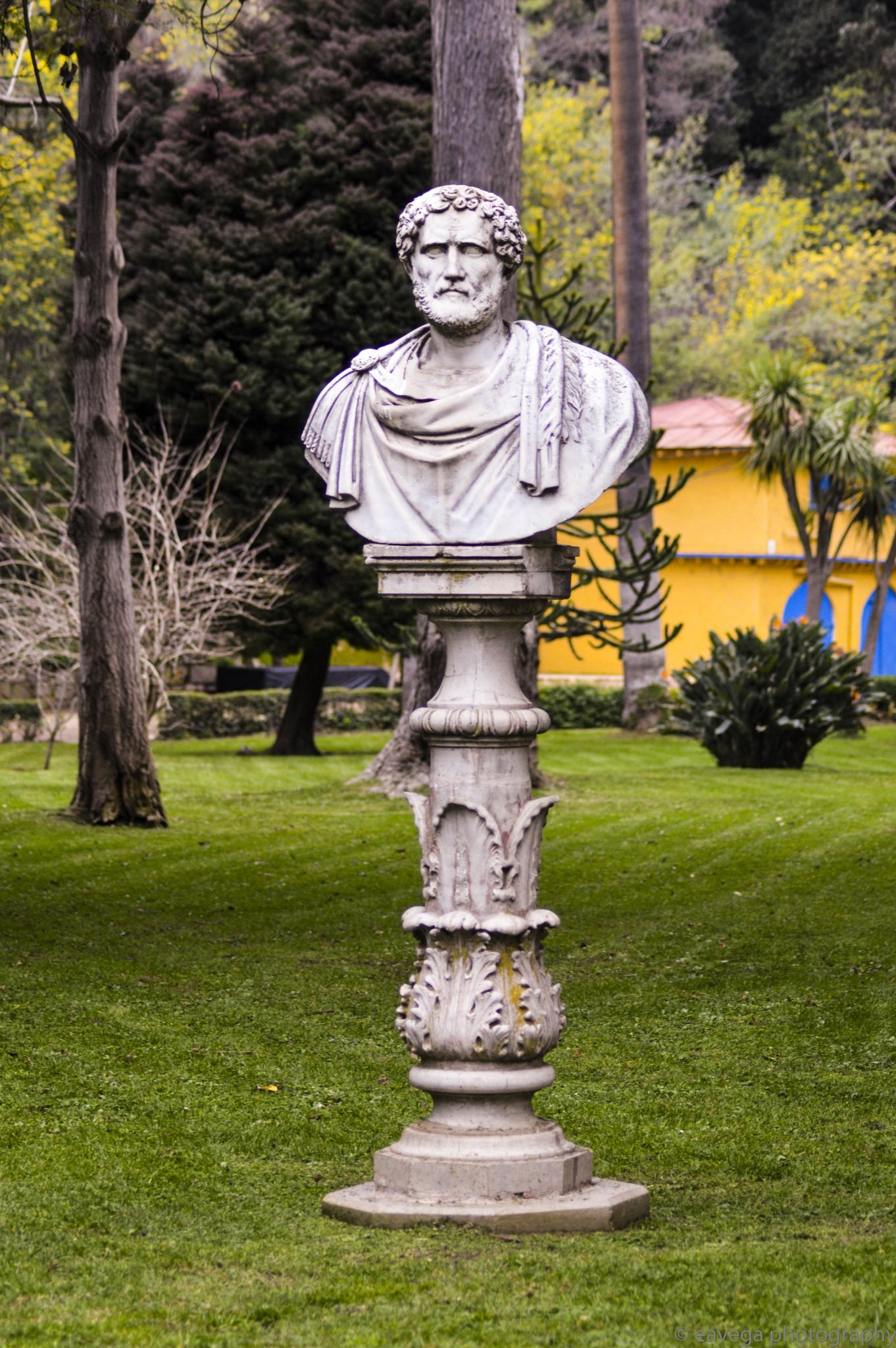 Bust by Eduardo Vega H