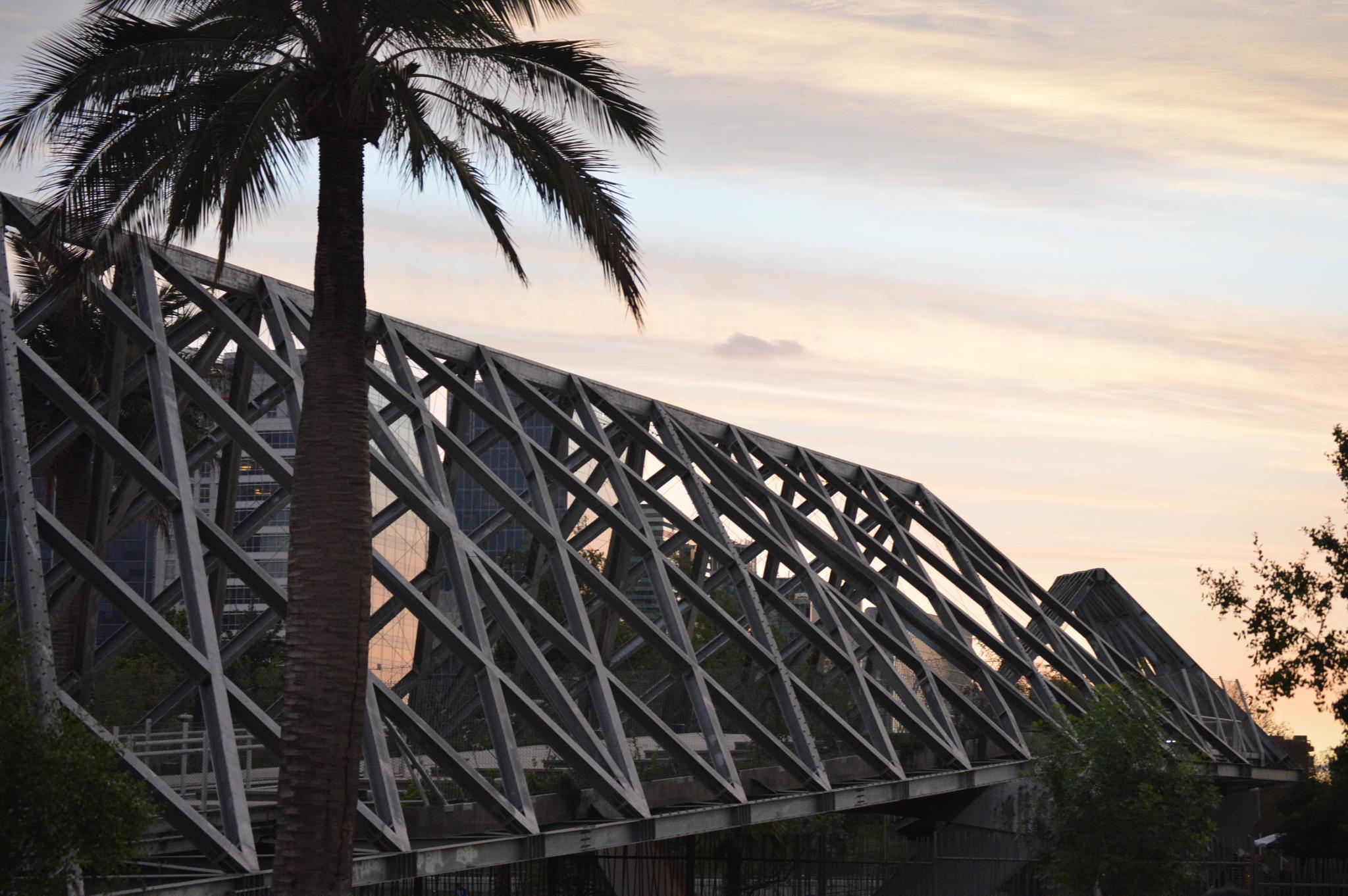 Bridge by Eduardo Vega H