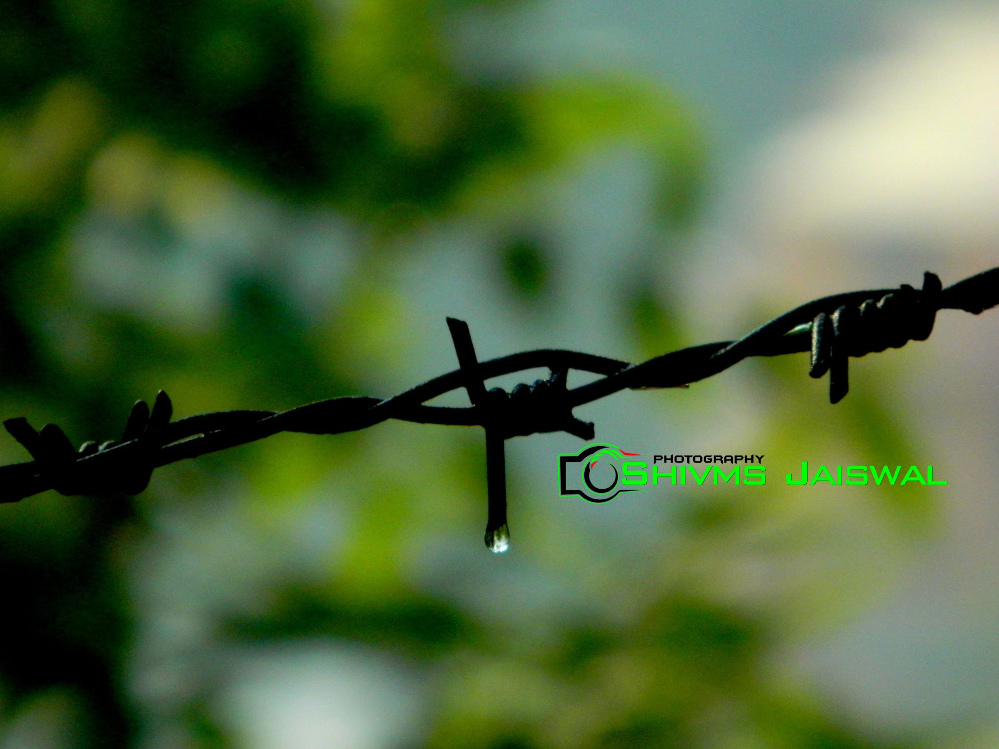 Untitled by Shivms Jaiswal