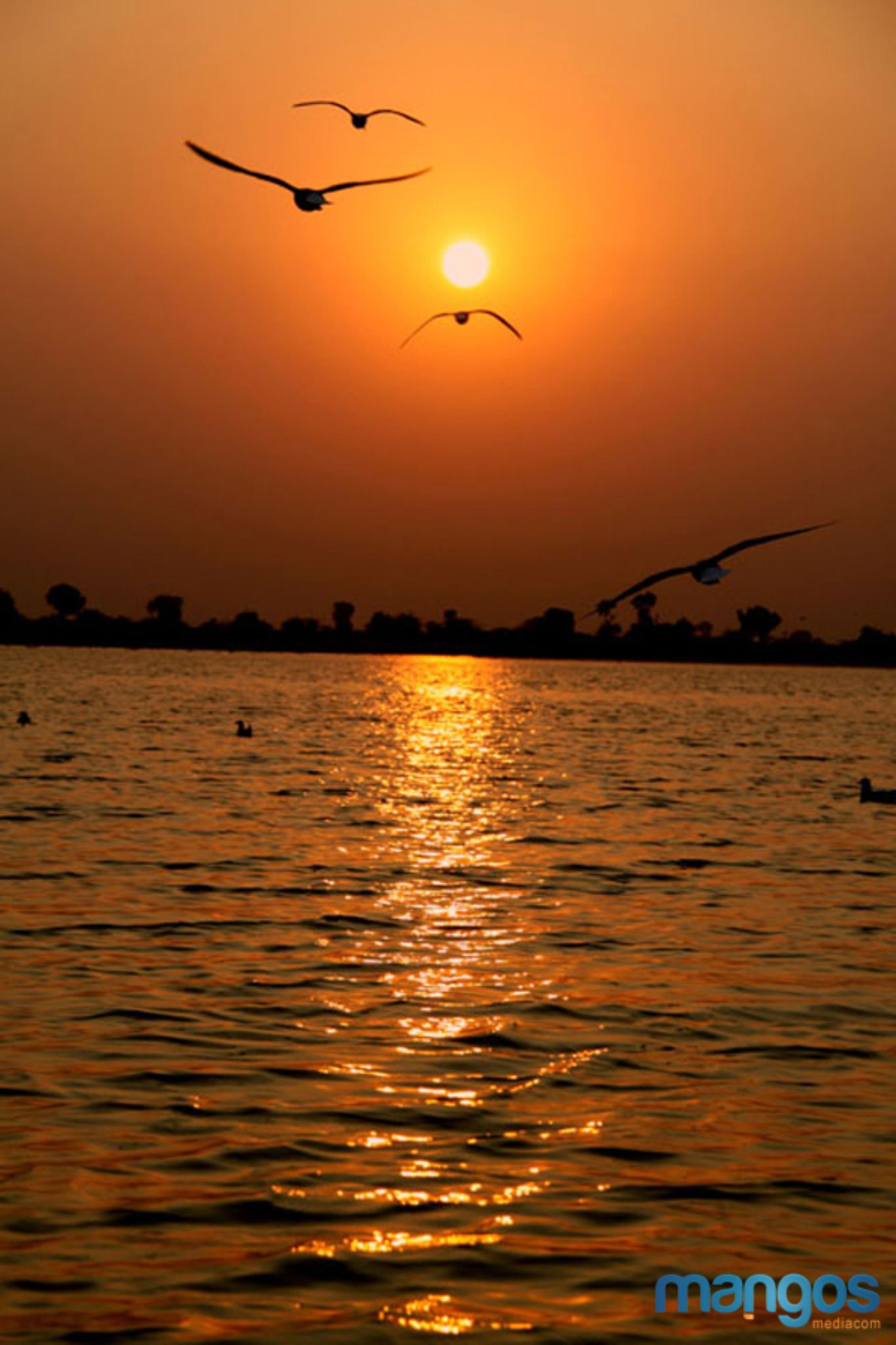 Travel Photography In Ahmedabad by Mangoes Mediacom