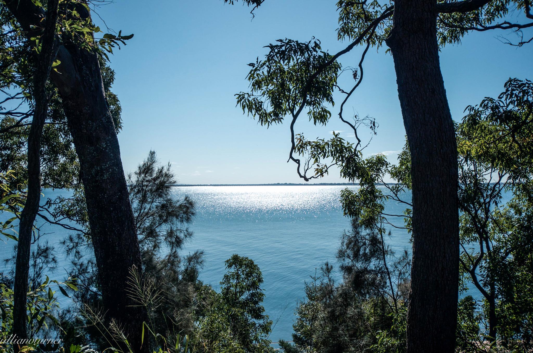 Morton Bay Brisbane  by jill.turner.90