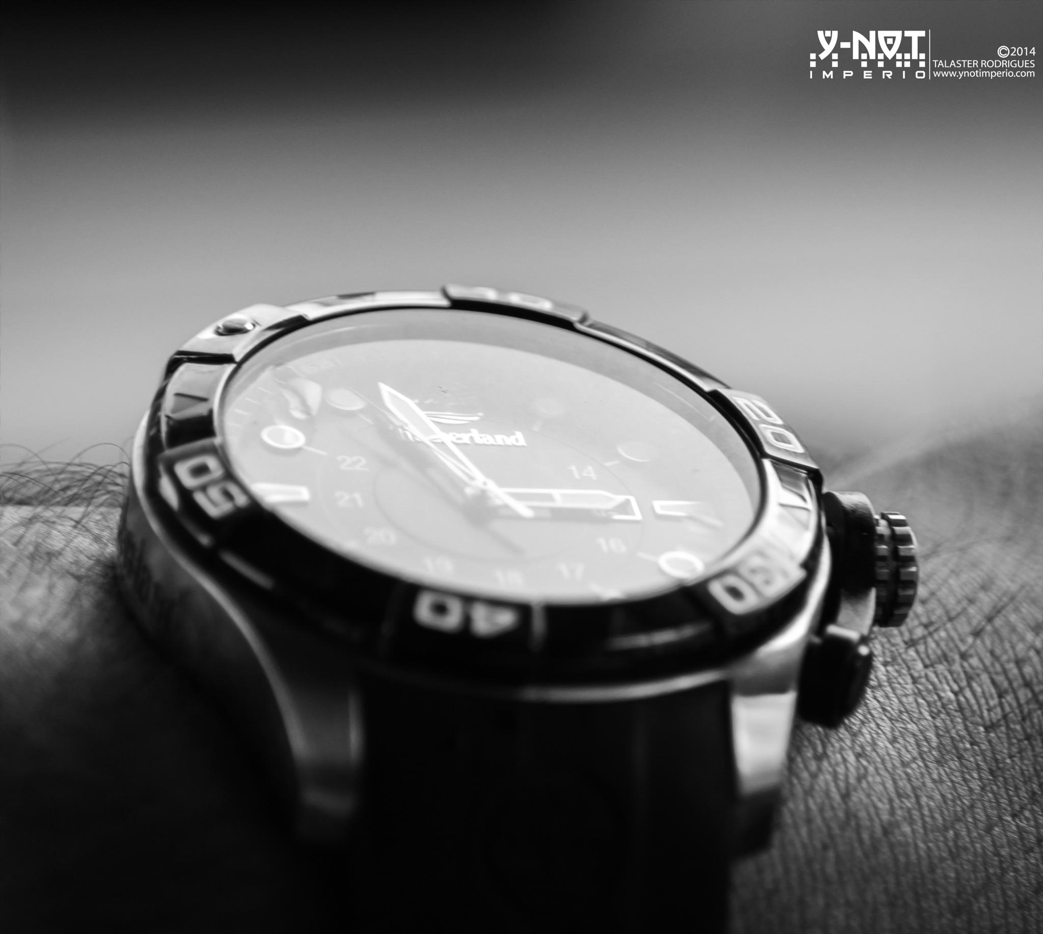 Timberland watch by Talaster Rodrigues