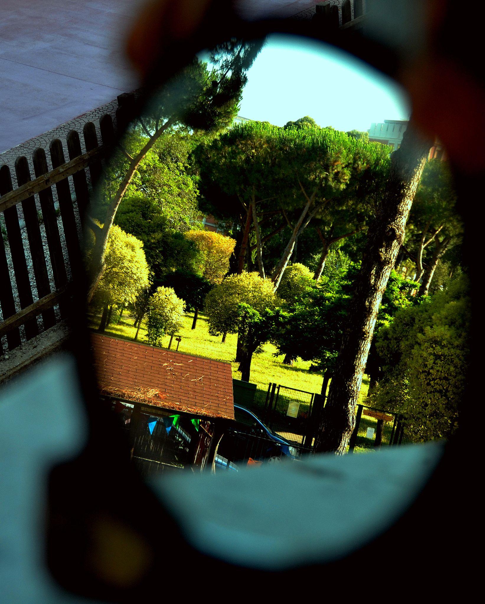 Reflection by PatriziaCortellessa